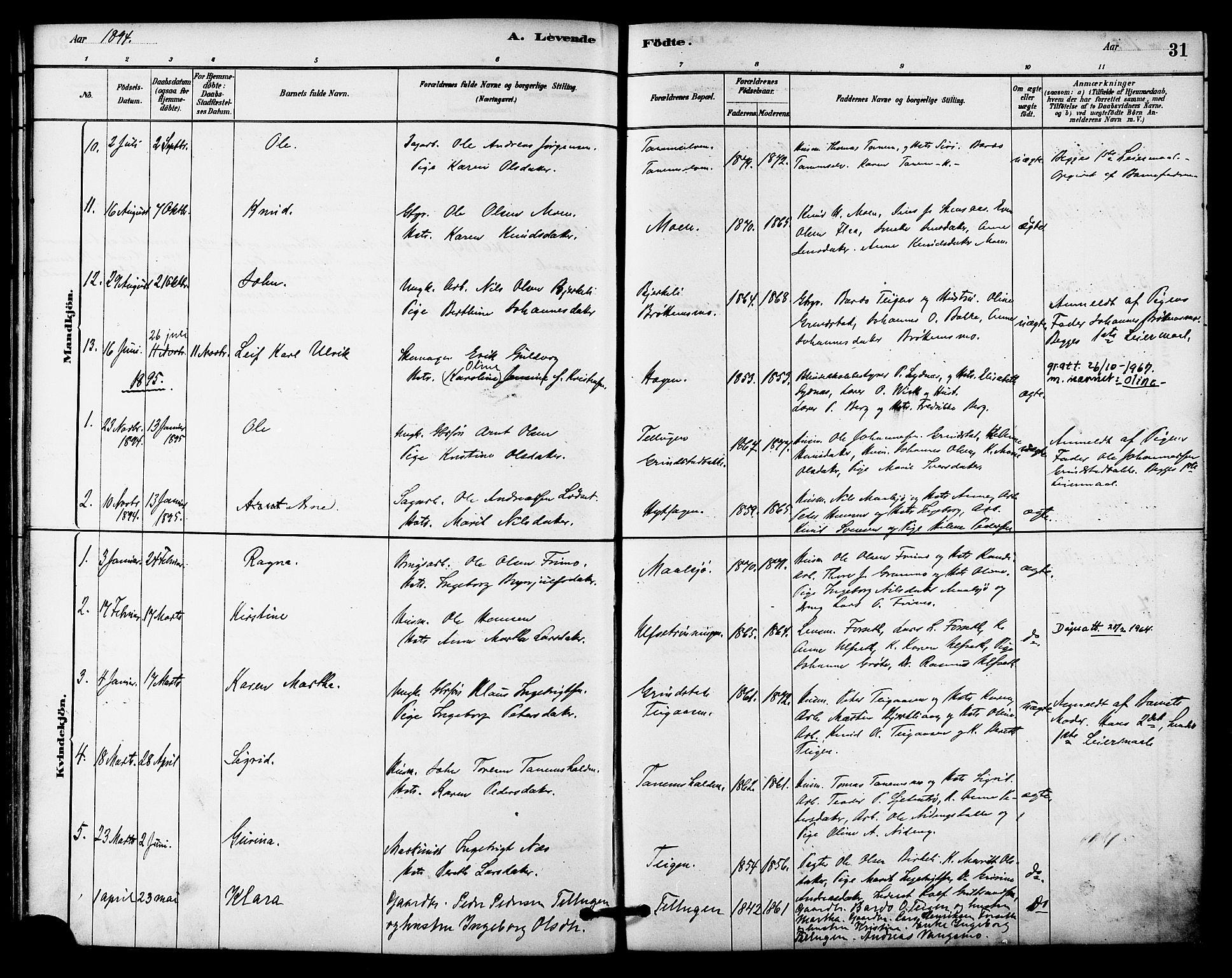 SAT, Ministerialprotokoller, klokkerbøker og fødselsregistre - Sør-Trøndelag, 618/L0444: Ministerialbok nr. 618A07, 1880-1898, s. 31
