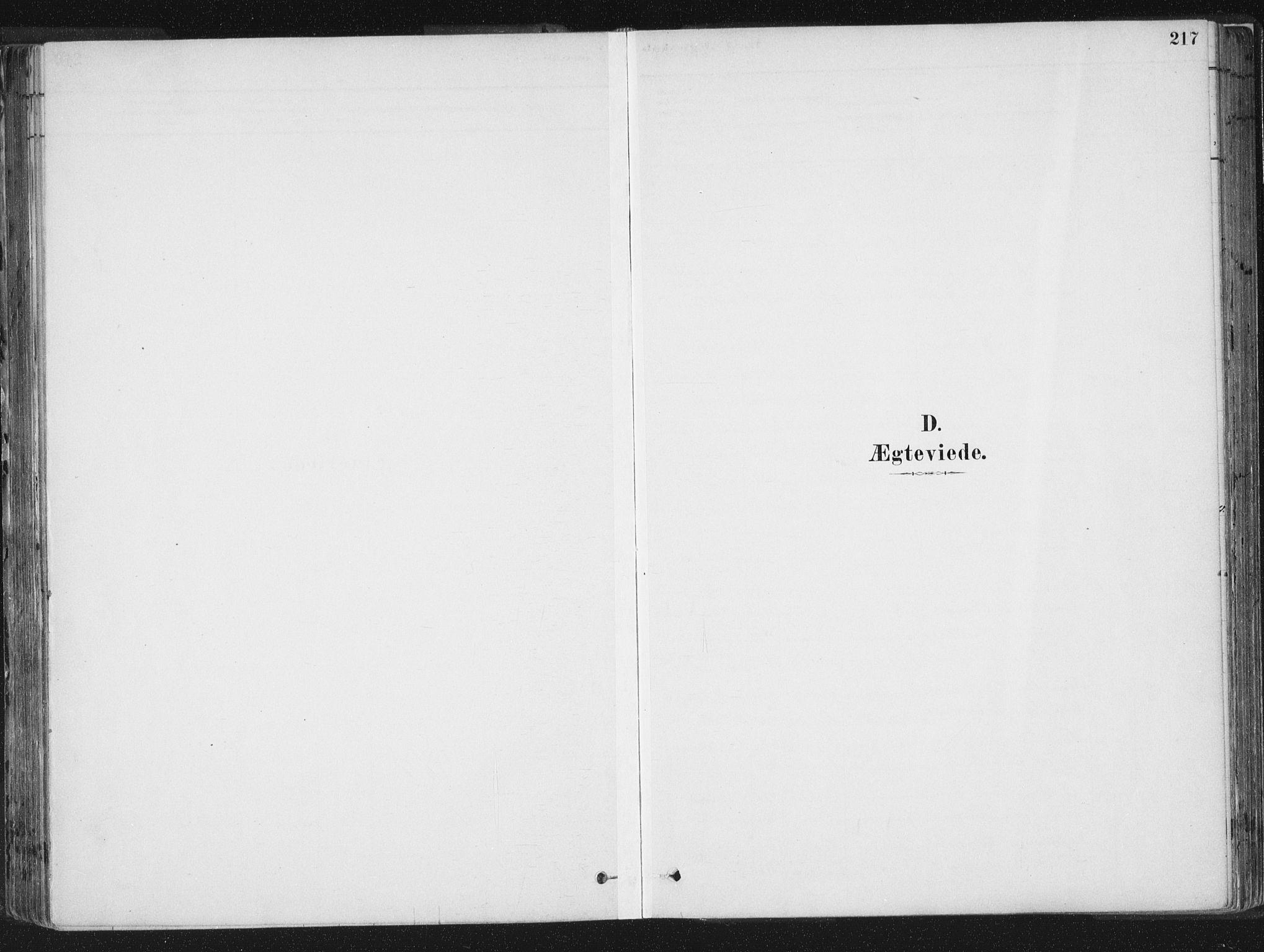 SAT, Ministerialprotokoller, klokkerbøker og fødselsregistre - Sør-Trøndelag, 659/L0739: Ministerialbok nr. 659A09, 1879-1893, s. 217