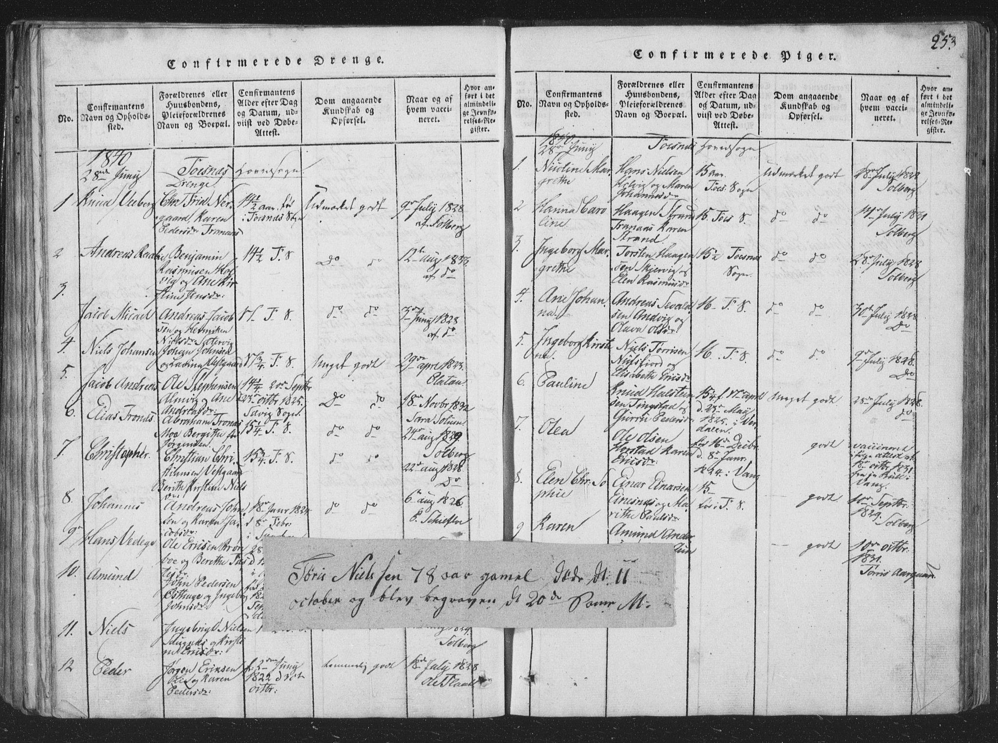 SAT, Ministerialprotokoller, klokkerbøker og fødselsregistre - Nord-Trøndelag, 773/L0613: Ministerialbok nr. 773A04, 1815-1845, s. 253