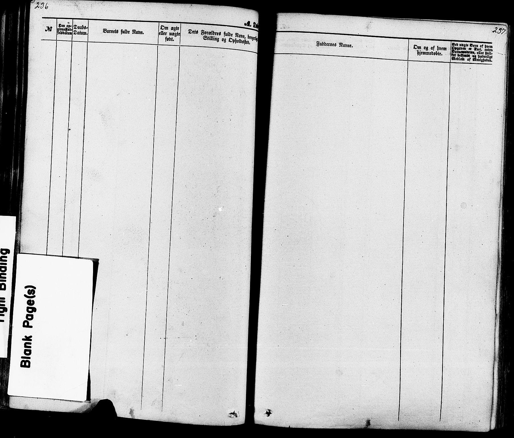 SAKO, Seljord kirkebøker, F/Fa/L0013: Ministerialbok nr. I 13, 1866-1876, s. 236-237
