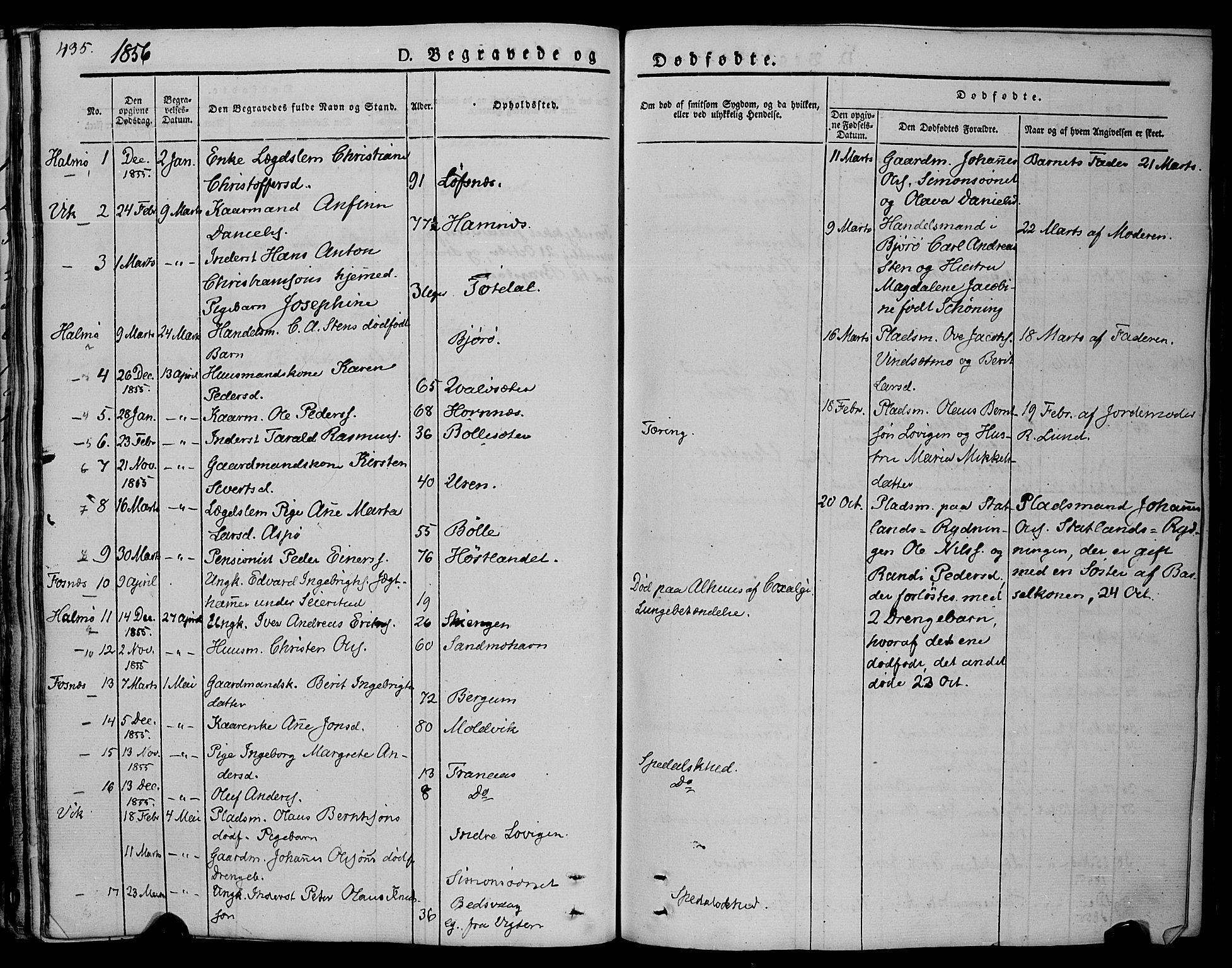 SAT, Ministerialprotokoller, klokkerbøker og fødselsregistre - Nord-Trøndelag, 773/L0614: Ministerialbok nr. 773A05, 1831-1856, s. 435