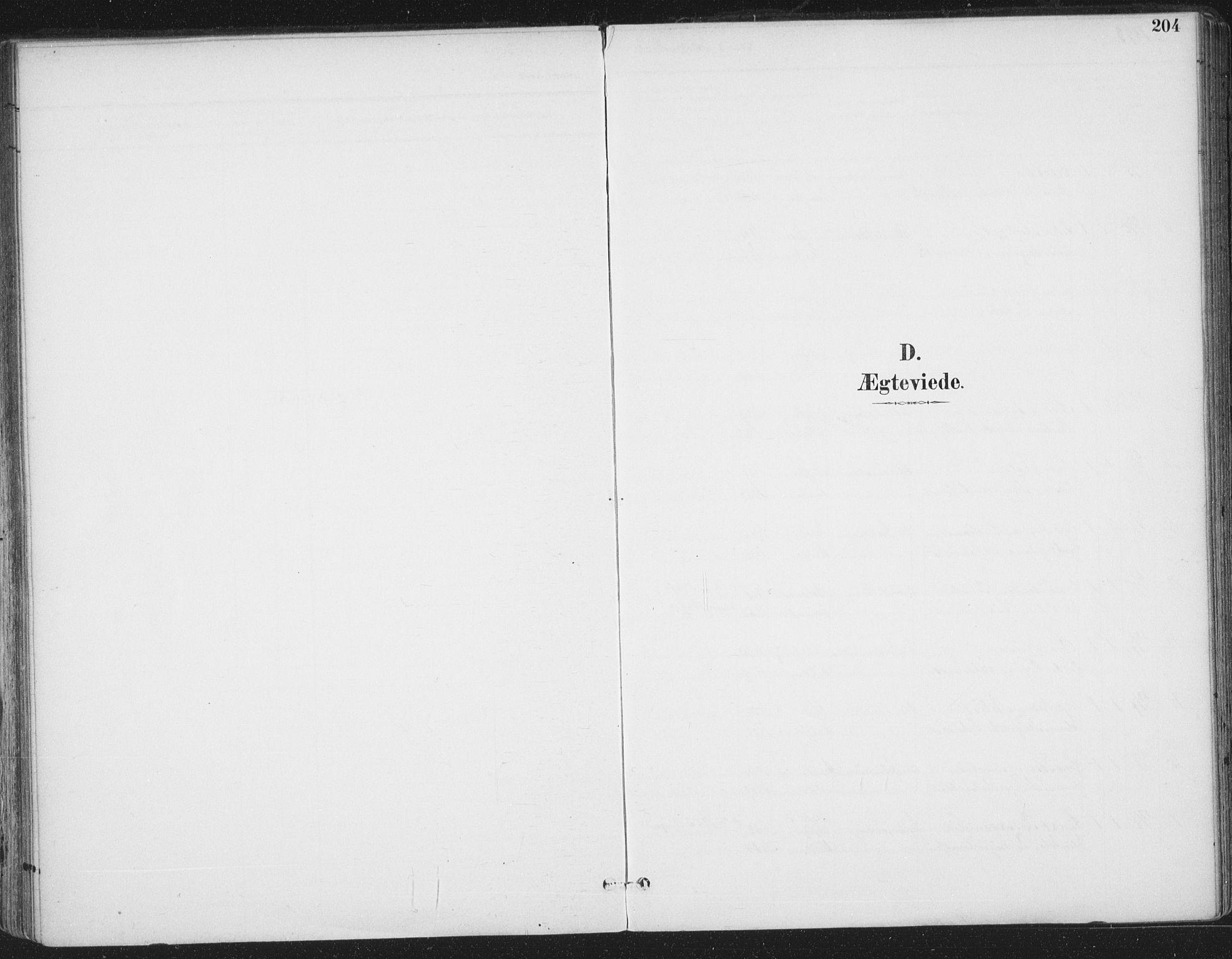SAT, Ministerialprotokoller, klokkerbøker og fødselsregistre - Sør-Trøndelag, 659/L0743: Ministerialbok nr. 659A13, 1893-1910, s. 204