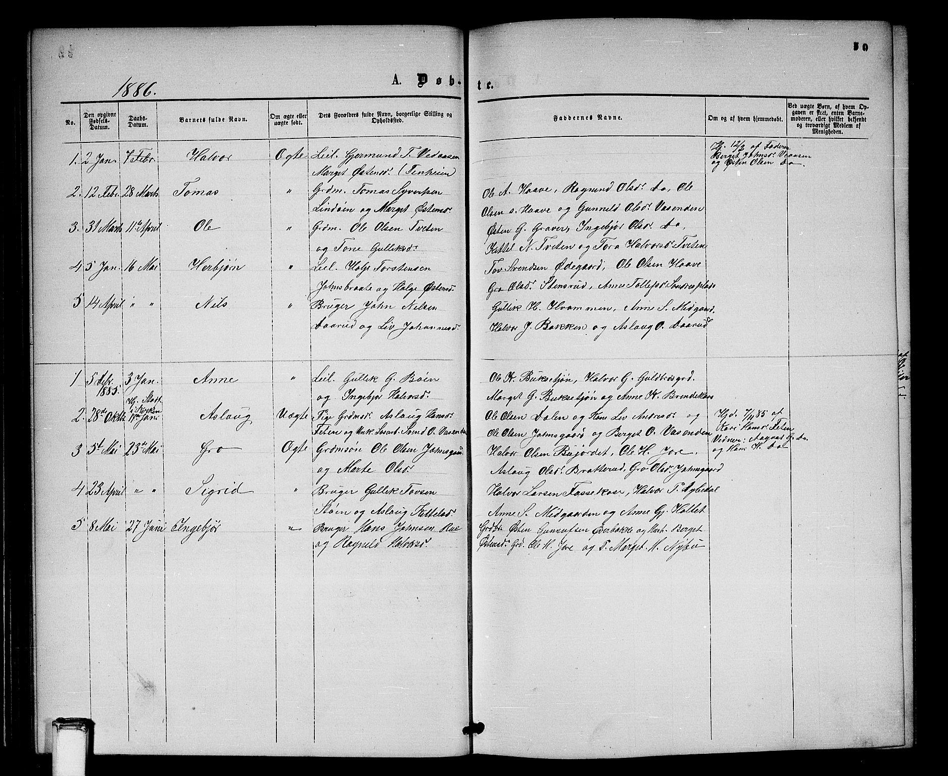SAKO, Gransherad kirkebøker, G/Gb/L0002: Klokkerbok nr. II 2, 1860-1886, s. 50