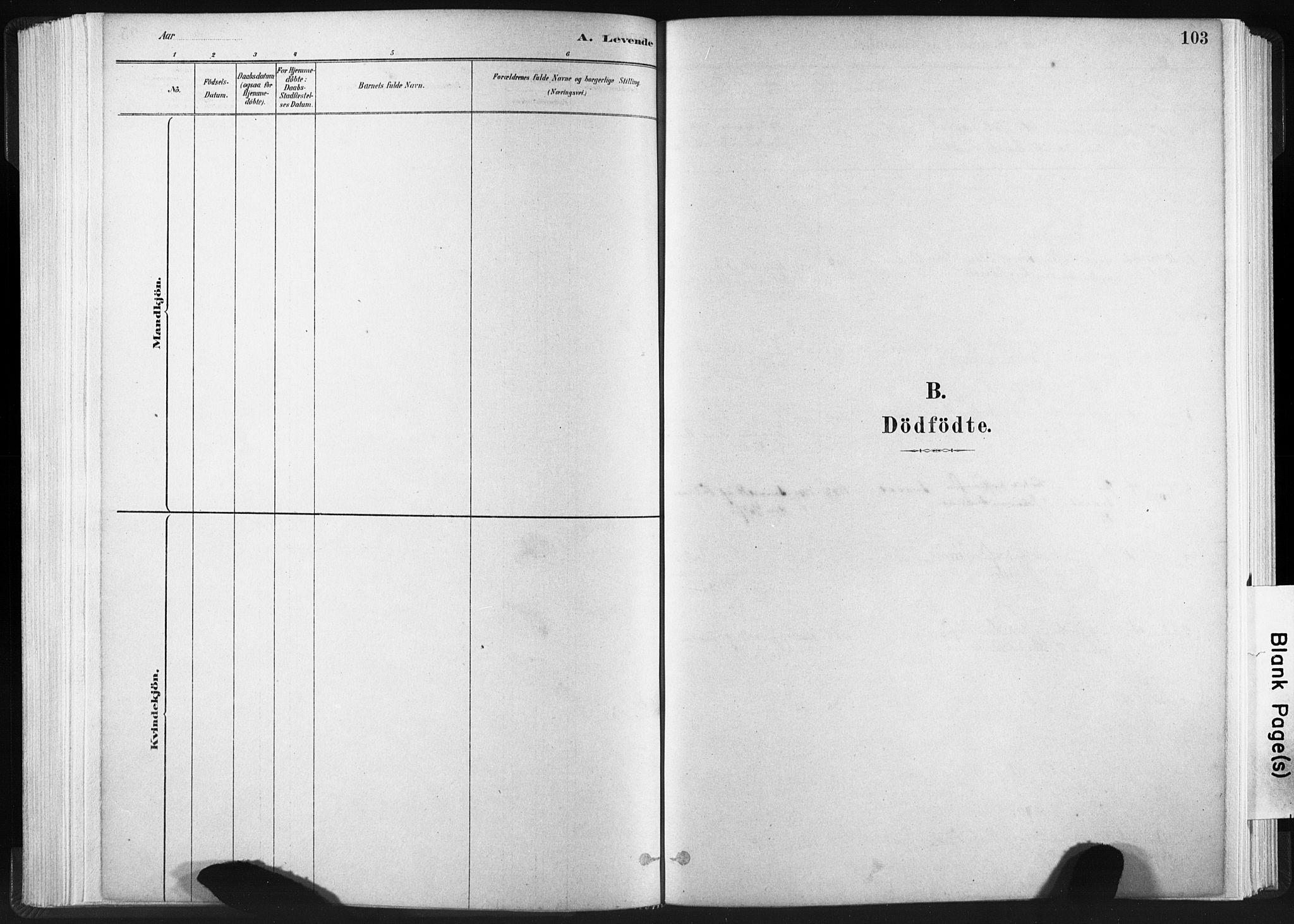 SAT, Ministerialprotokoller, klokkerbøker og fødselsregistre - Sør-Trøndelag, 665/L0773: Ministerialbok nr. 665A08, 1879-1905, s. 103