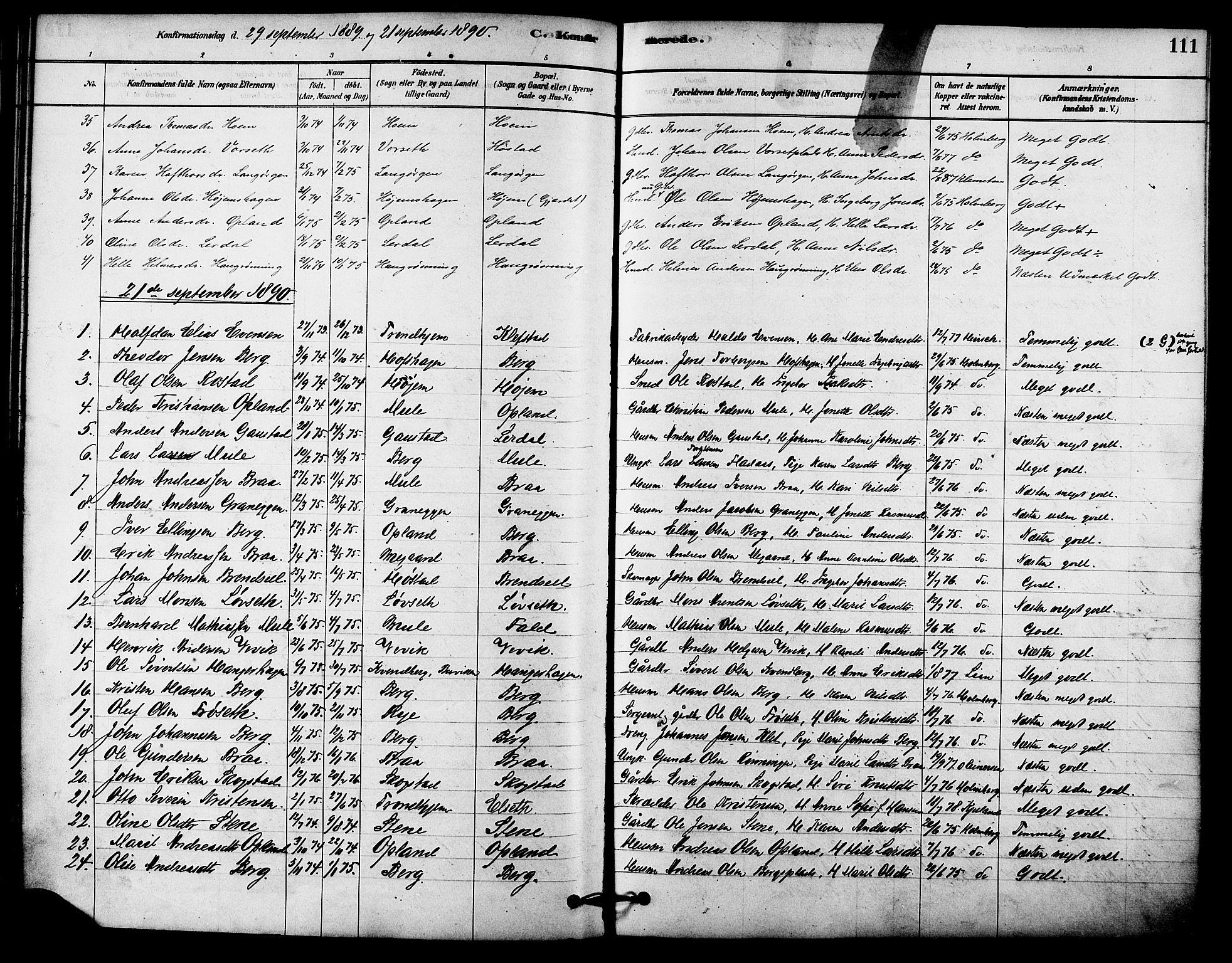 SAT, Ministerialprotokoller, klokkerbøker og fødselsregistre - Sør-Trøndelag, 612/L0378: Ministerialbok nr. 612A10, 1878-1897, s. 111
