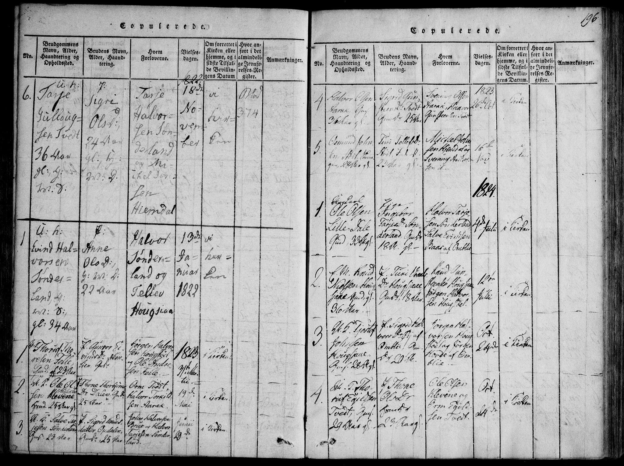 SAKO, Nissedal kirkebøker, F/Fb/L0001: Ministerialbok nr. II 1, 1814-1845, s. 196