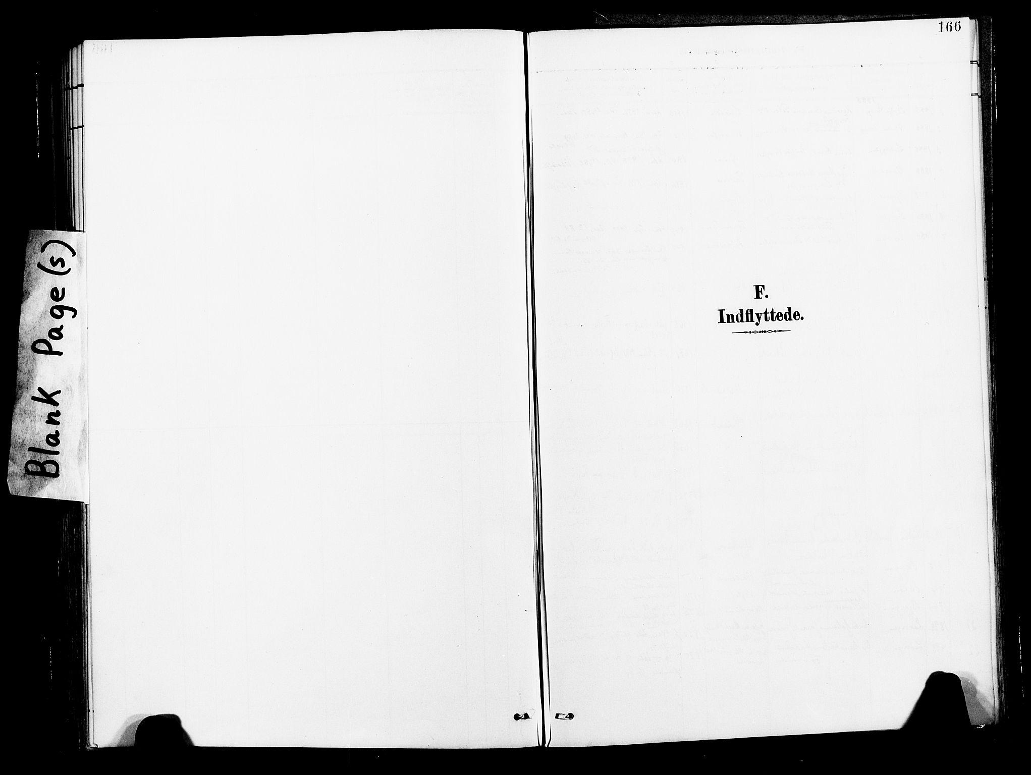 SAT, Ministerialprotokoller, klokkerbøker og fødselsregistre - Nord-Trøndelag, 713/L0121: Ministerialbok nr. 713A10, 1888-1898, s. 166