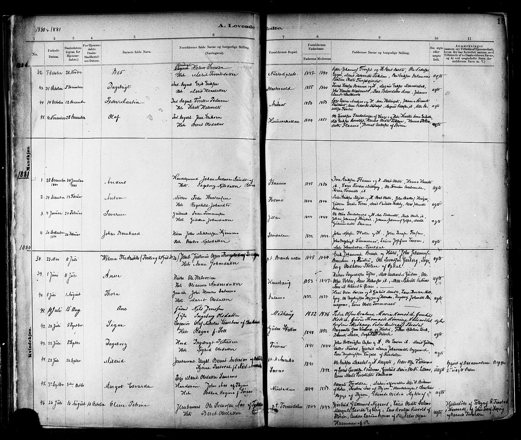 SAT, Ministerialprotokoller, klokkerbøker og fødselsregistre - Nord-Trøndelag, 706/L0047: Ministerialbok nr. 706A03, 1878-1892, s. 15