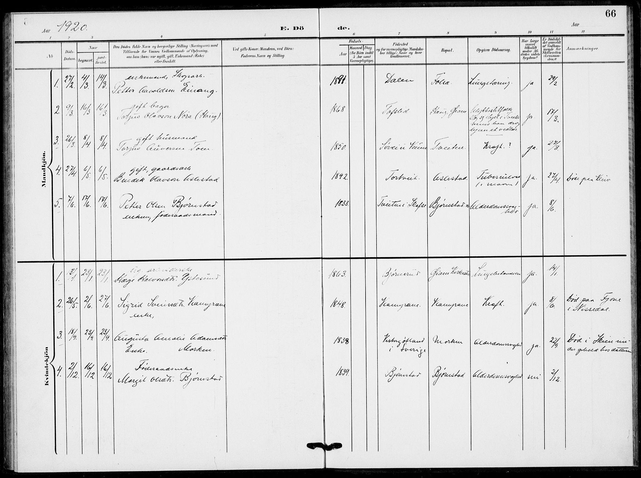SAKO, Fyresdal kirkebøker, F/Fb/L0004: Ministerialbok nr. II 4, 1903-1920, s. 66