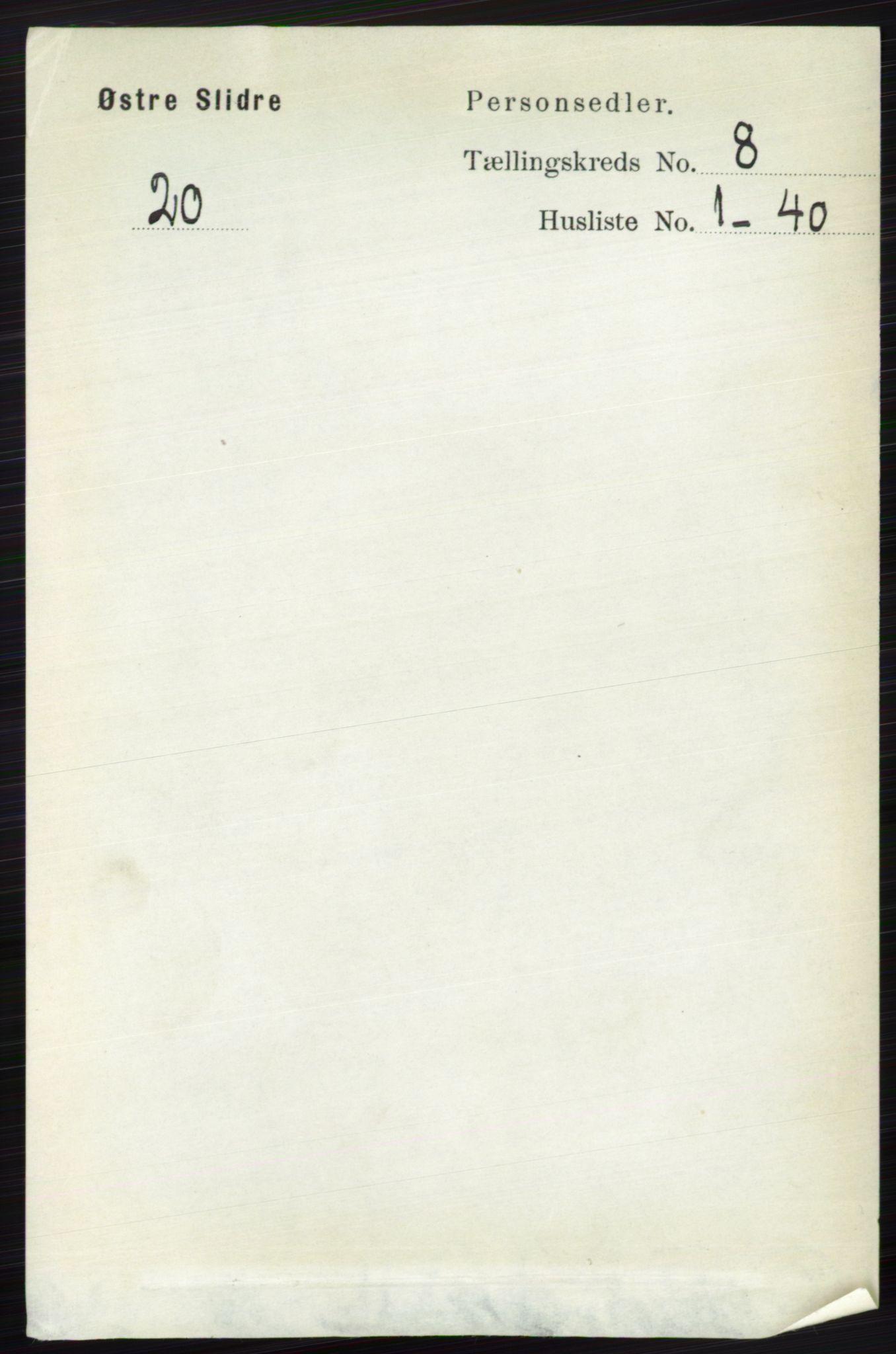 RA, Folketelling 1891 for 0544 Øystre Slidre herred, 1891, s. 2551