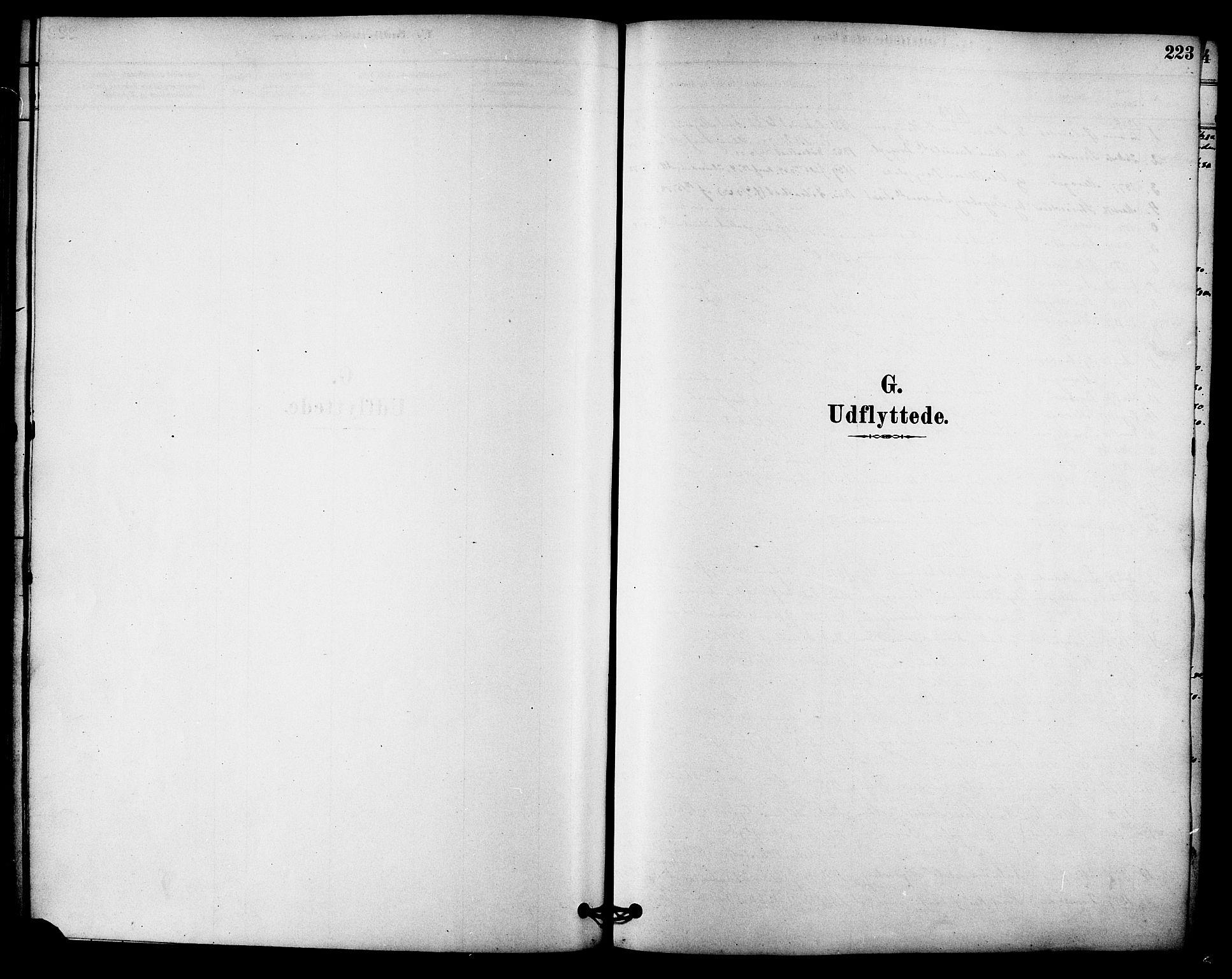 SAT, Ministerialprotokoller, klokkerbøker og fødselsregistre - Sør-Trøndelag, 612/L0378: Ministerialbok nr. 612A10, 1878-1897, s. 223