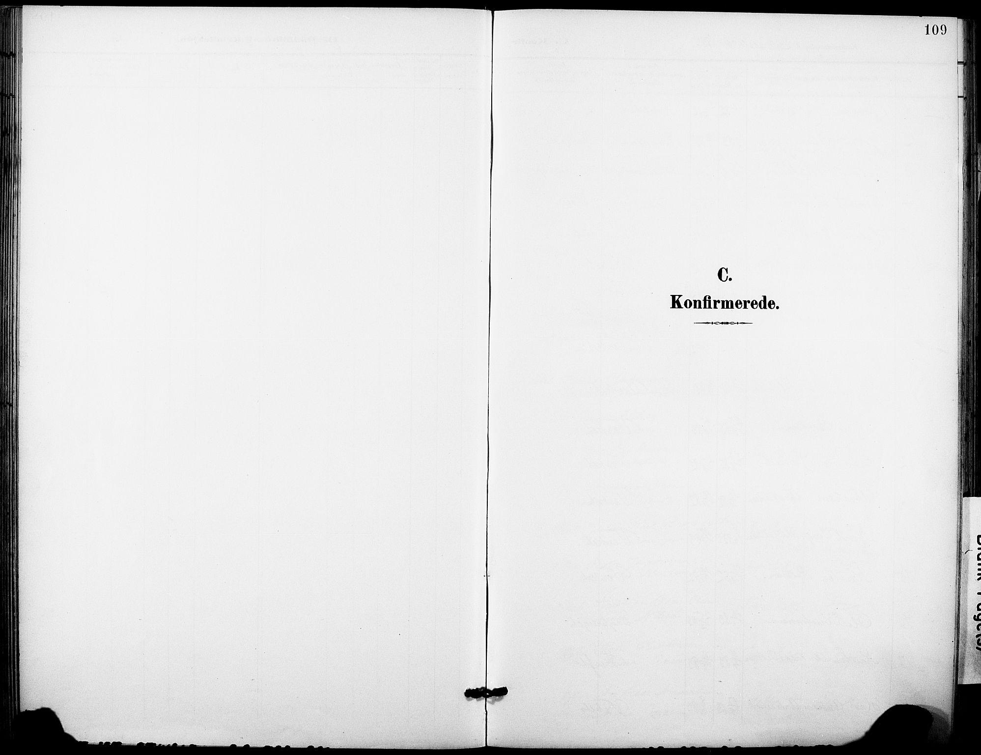 SAKO, Holla kirkebøker, F/Fa/L0010: Ministerialbok nr. 10, 1897-1907, s. 109