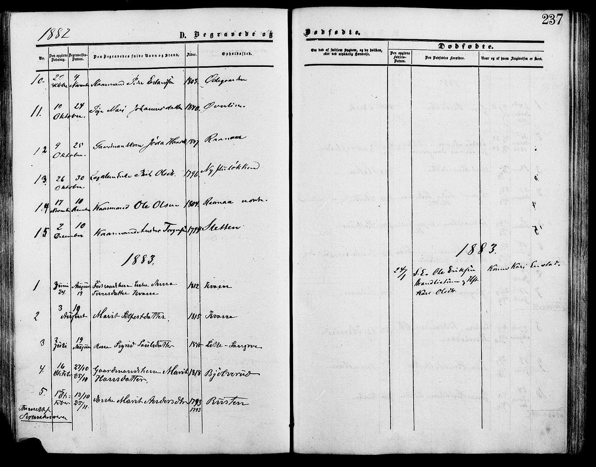 SAH, Lesja prestekontor, Ministerialbok nr. 9, 1854-1889, s. 237