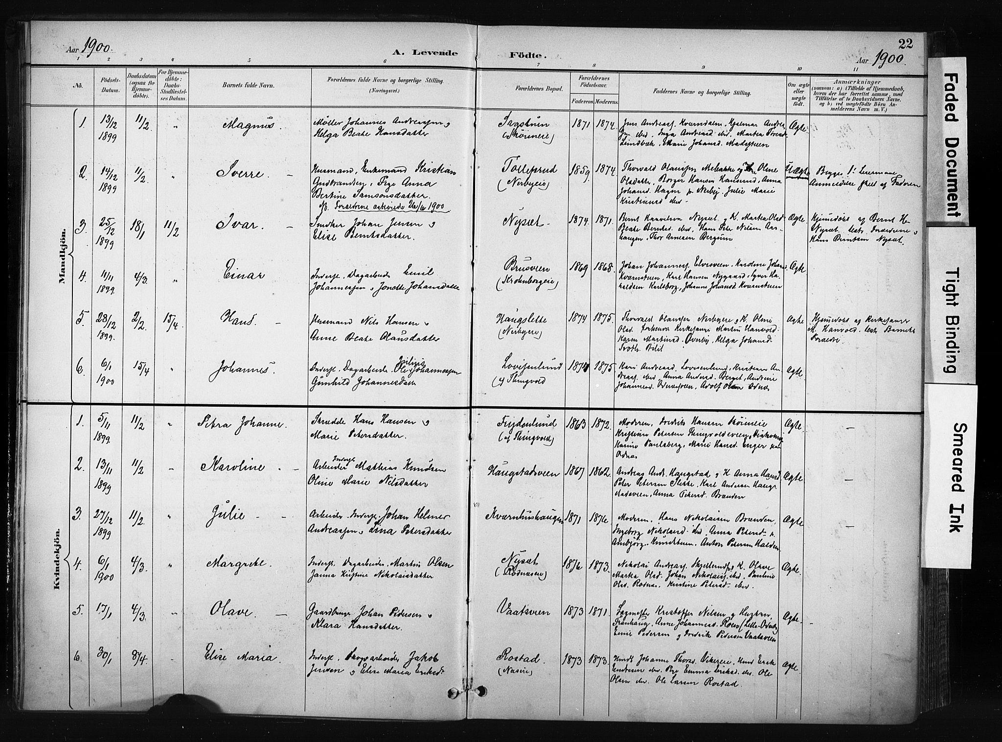 SAH, Søndre Land prestekontor, K/L0004: Ministerialbok nr. 4, 1895-1904, s. 22