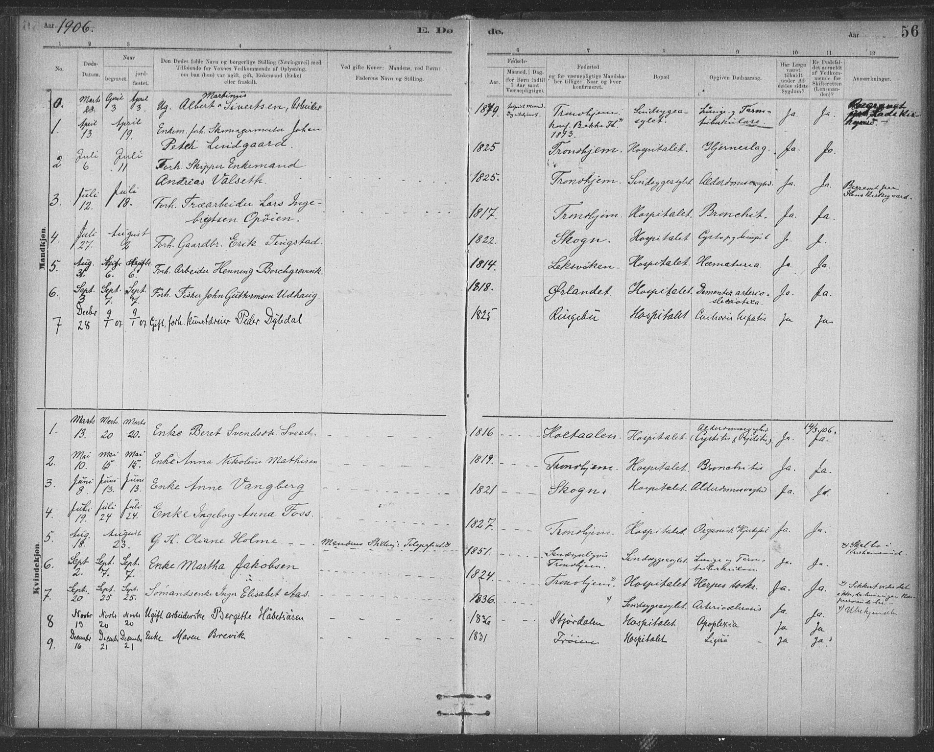 SAT, Ministerialprotokoller, klokkerbøker og fødselsregistre - Sør-Trøndelag, 623/L0470: Ministerialbok nr. 623A04, 1884-1938, s. 56
