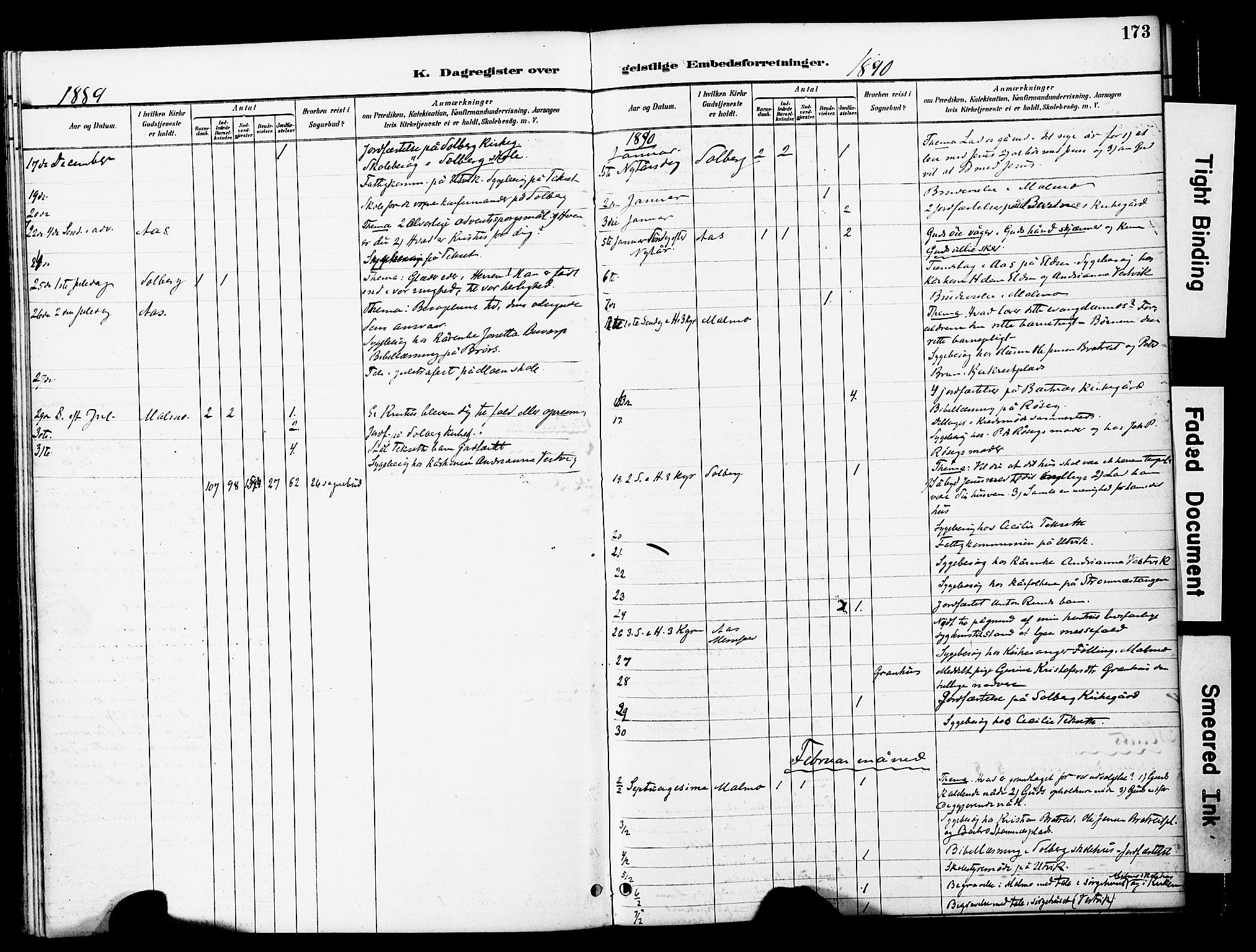 SAT, Ministerialprotokoller, klokkerbøker og fødselsregistre - Nord-Trøndelag, 741/L0396: Ministerialbok nr. 741A10, 1889-1901, s. 173