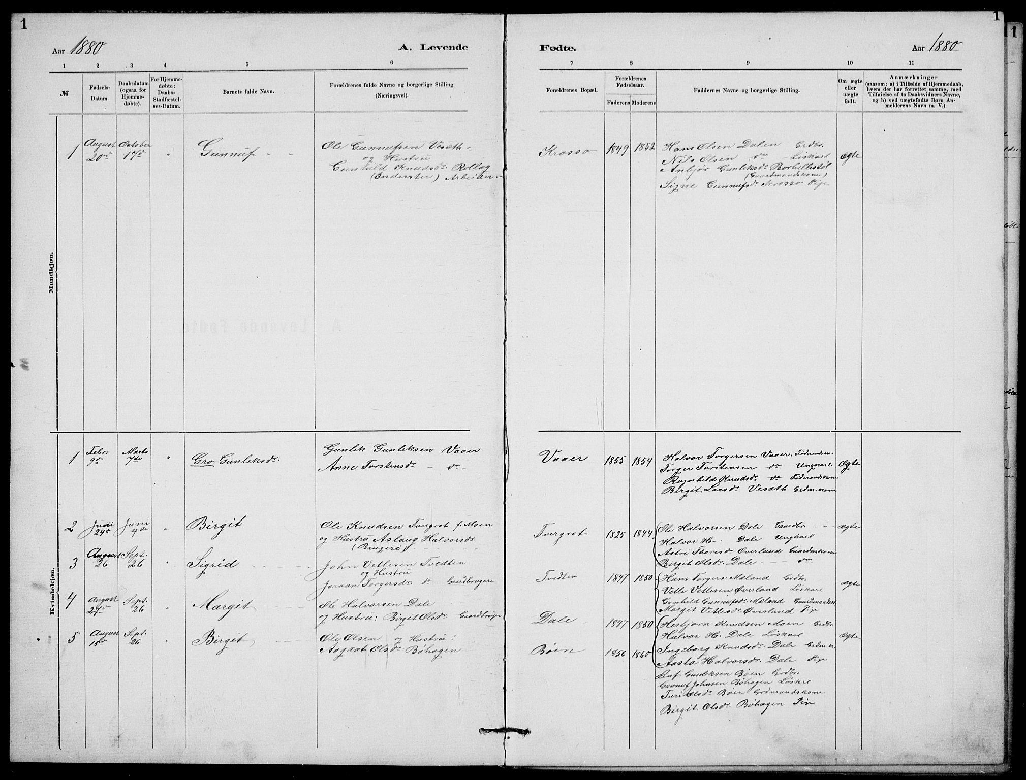 SAKO, Rjukan kirkebøker, G/Ga/L0001: Klokkerbok nr. 1, 1880-1914, s. 1