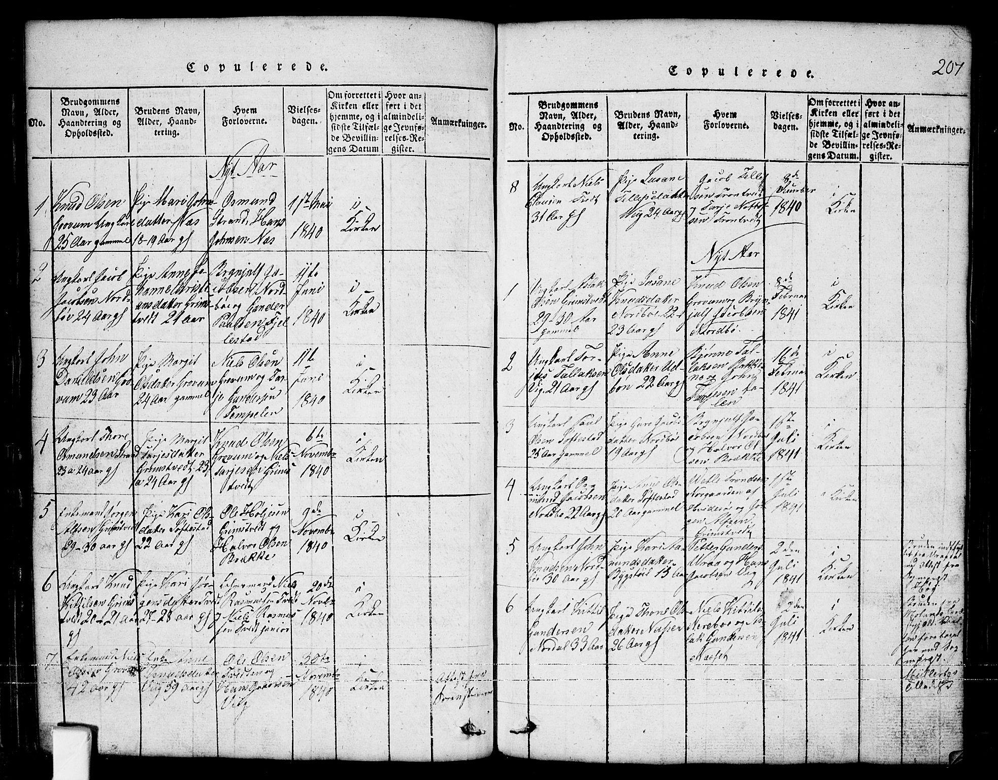 SAKO, Nissedal kirkebøker, G/Ga/L0001: Klokkerbok nr. I 1, 1814-1860, s. 207