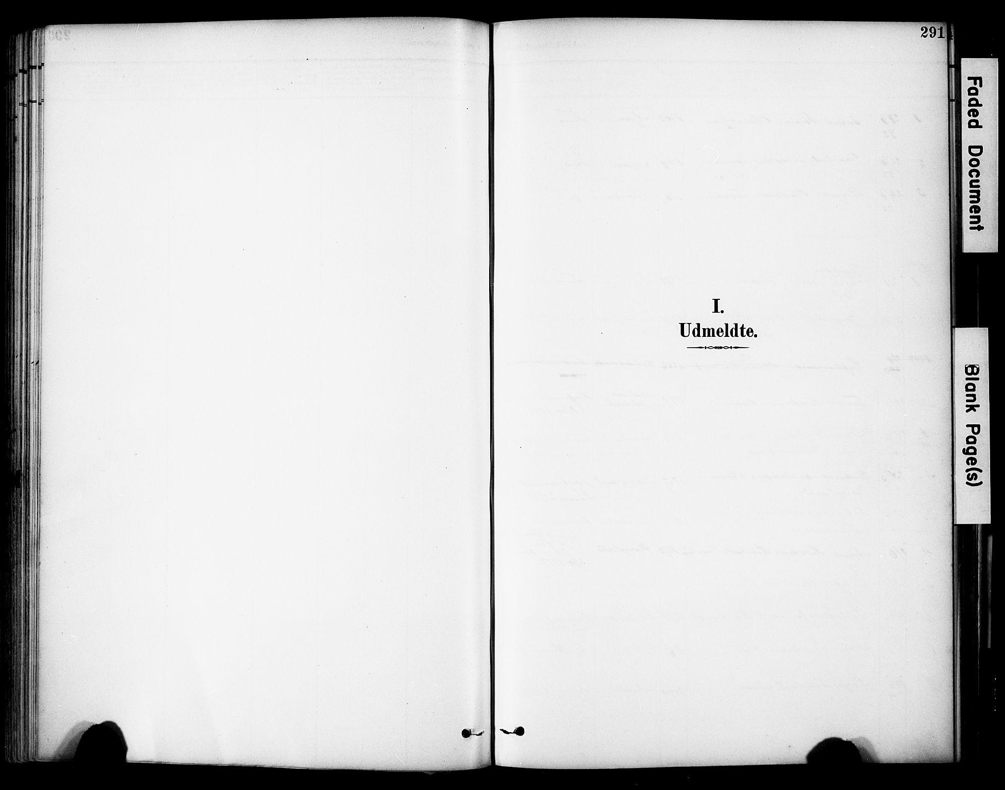 SAST, Lye sokneprestkontor, 30BA/L0011: Ministerialbok nr. A 9, 1893-1903, s. 291