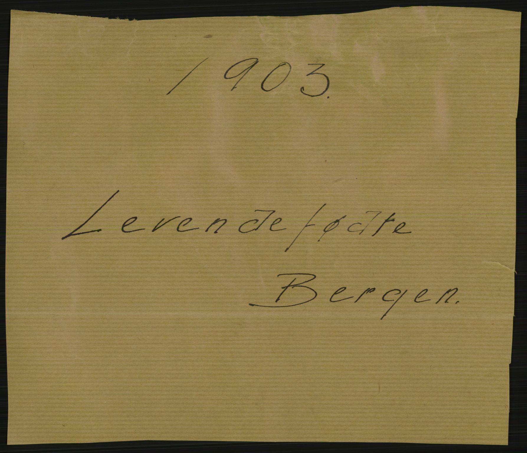 RA, Statistisk sentralbyrå, Sosiodemografiske emner, Befolkning, D/Df/Dfa/Dfaa/L0014: Bergen: Fødte, gifte, døde, 1903, s. 1