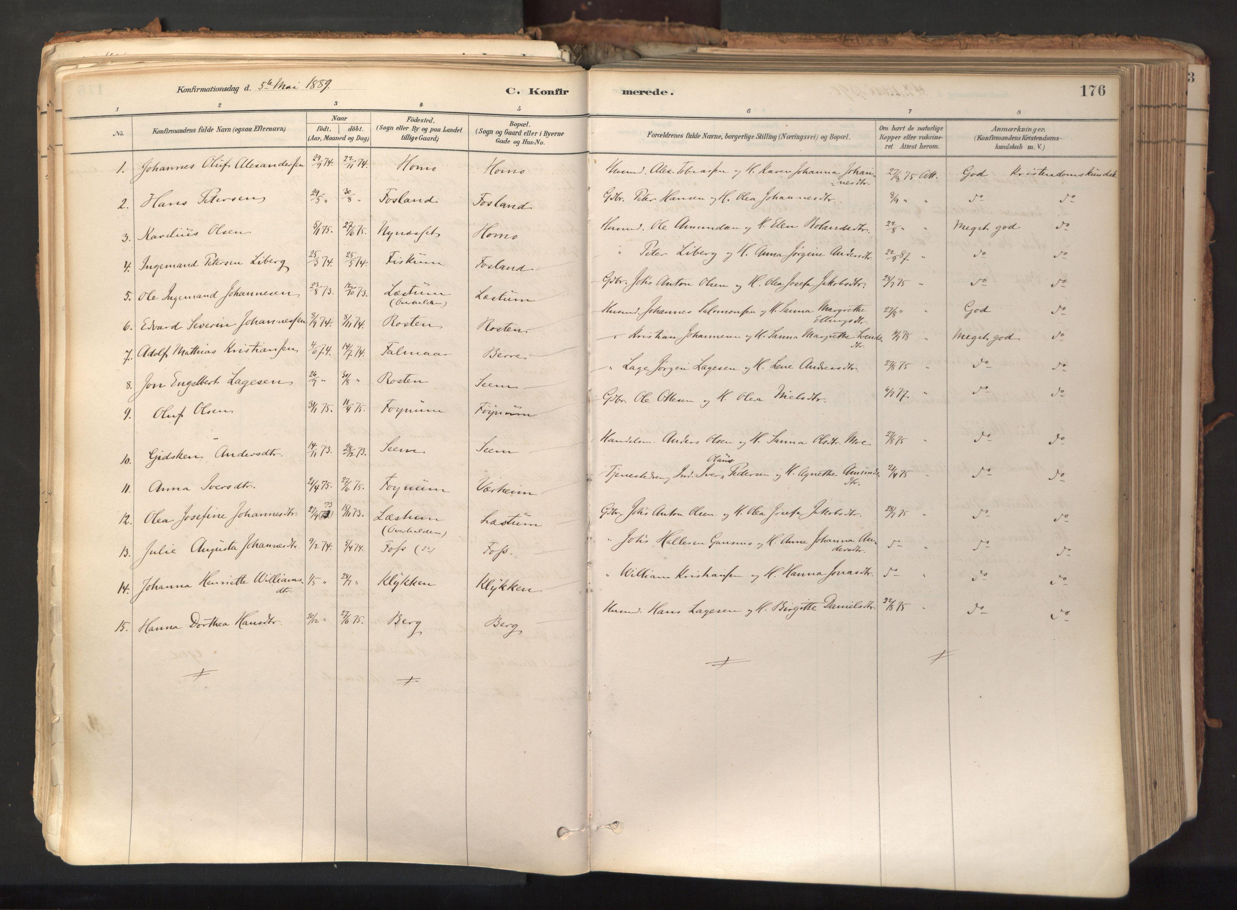 SAT, Ministerialprotokoller, klokkerbøker og fødselsregistre - Nord-Trøndelag, 758/L0519: Ministerialbok nr. 758A04, 1880-1926, s. 176