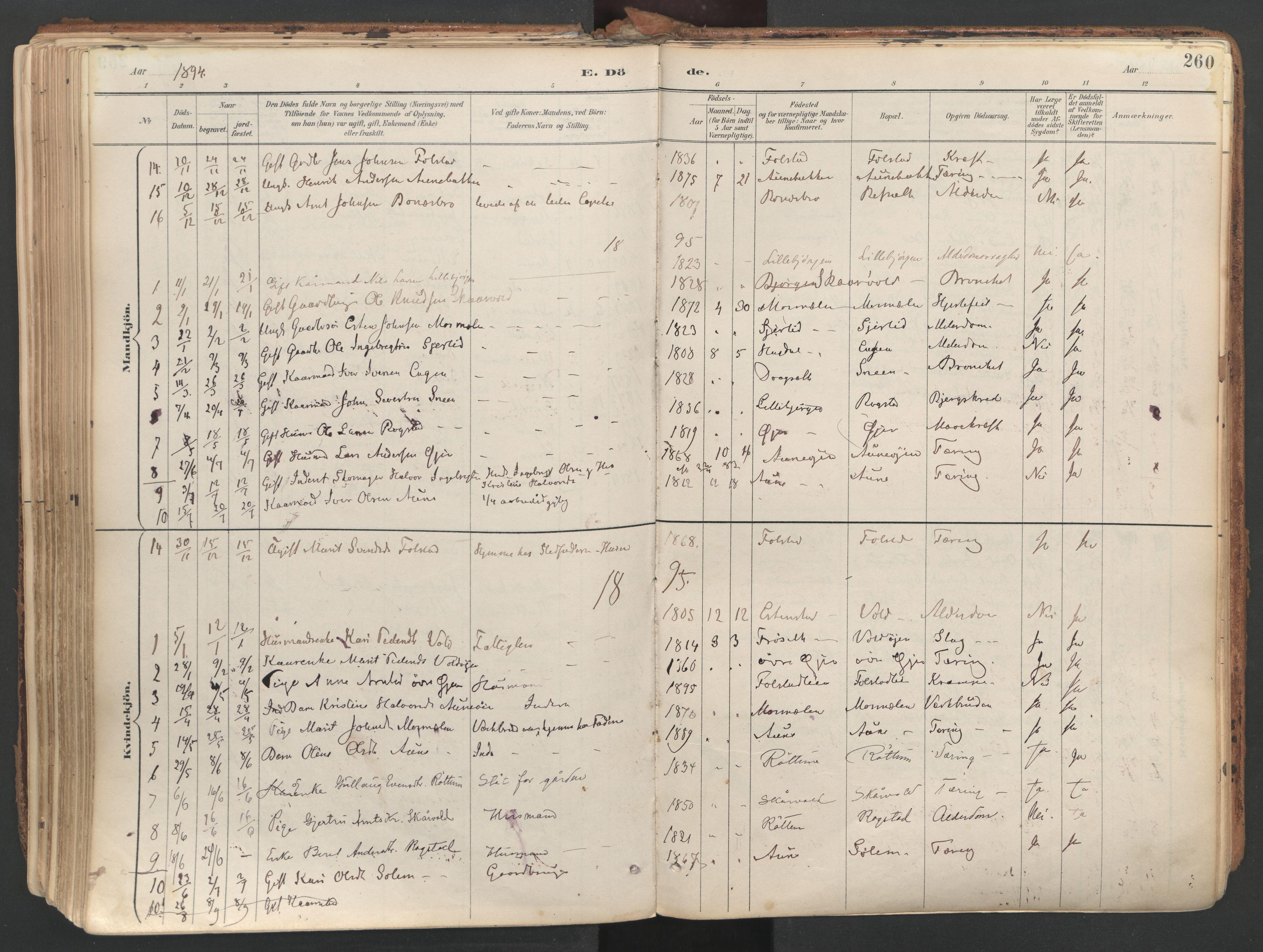 SAT, Ministerialprotokoller, klokkerbøker og fødselsregistre - Sør-Trøndelag, 687/L1004: Ministerialbok nr. 687A10, 1891-1923, s. 260