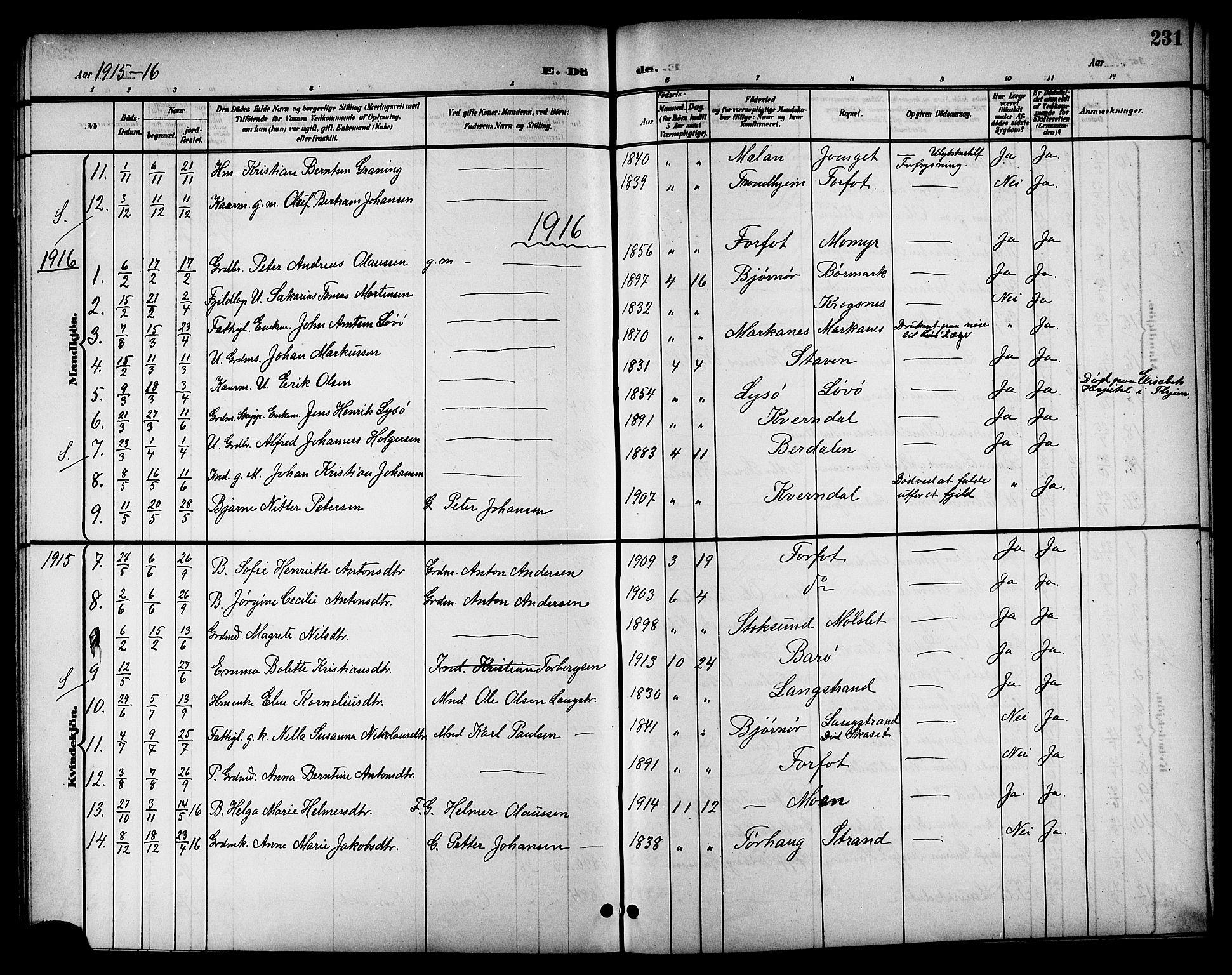 SAT, Ministerialprotokoller, klokkerbøker og fødselsregistre - Sør-Trøndelag, 655/L0688: Klokkerbok nr. 655C04, 1899-1922, s. 231