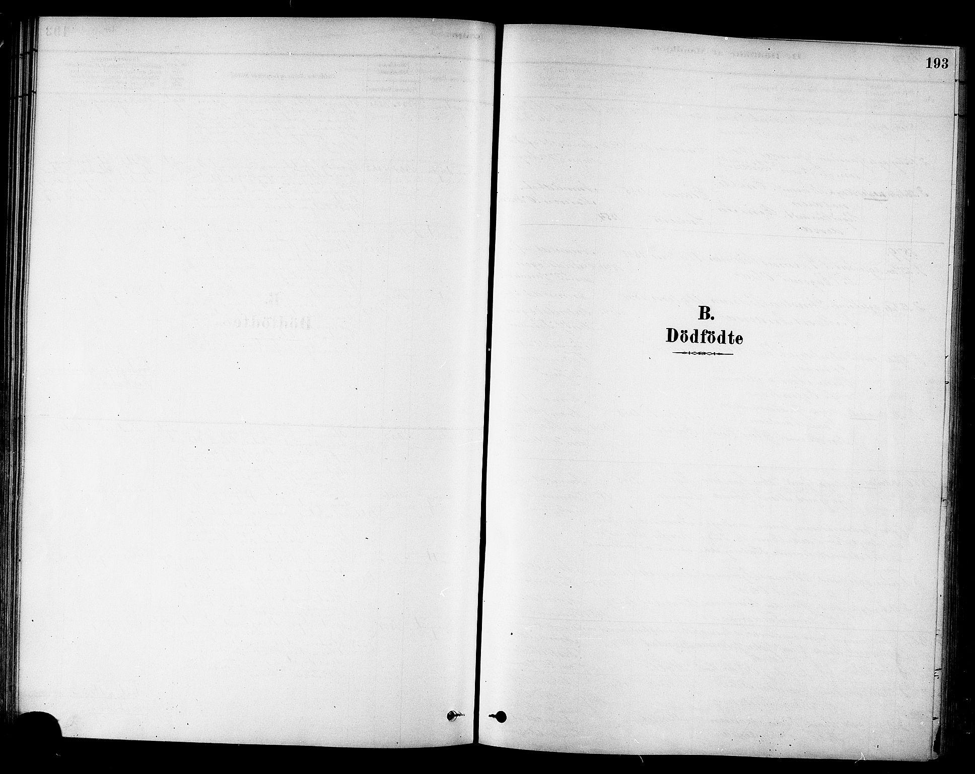 SAT, Ministerialprotokoller, klokkerbøker og fødselsregistre - Sør-Trøndelag, 695/L1148: Ministerialbok nr. 695A08, 1878-1891, s. 193