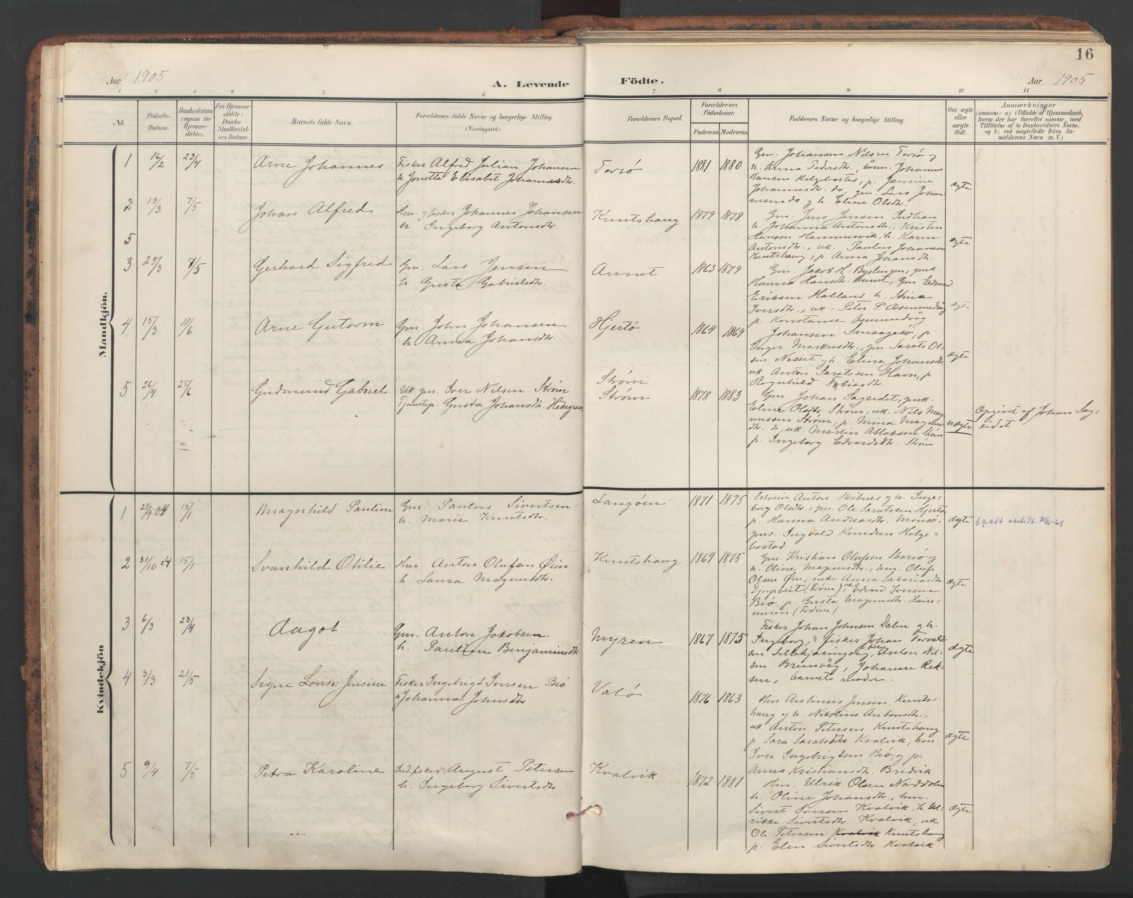 SAT, Ministerialprotokoller, klokkerbøker og fødselsregistre - Sør-Trøndelag, 634/L0537: Ministerialbok nr. 634A13, 1896-1922, s. 16