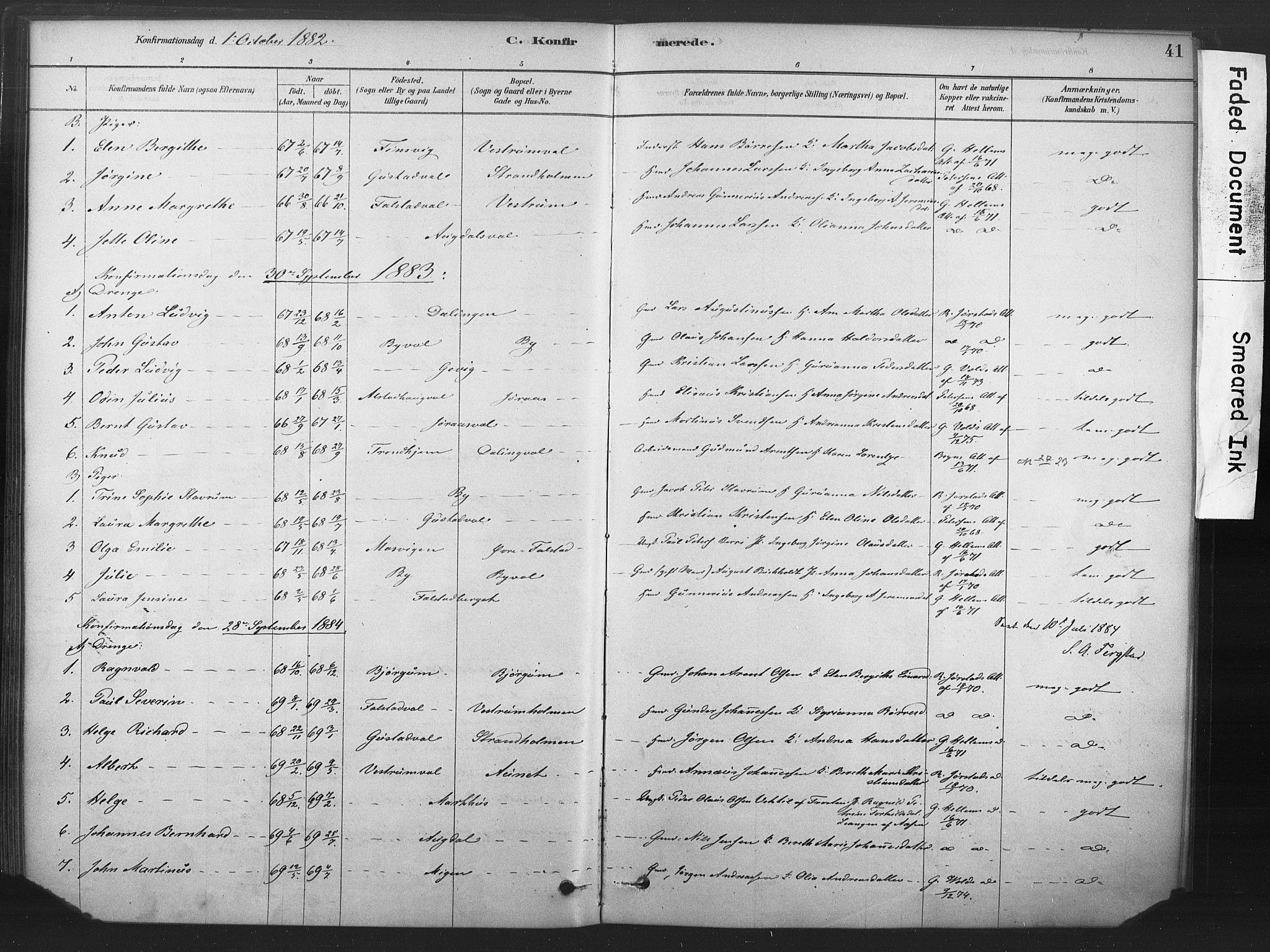 SAT, Ministerialprotokoller, klokkerbøker og fødselsregistre - Nord-Trøndelag, 719/L0178: Ministerialbok nr. 719A01, 1878-1900, s. 41
