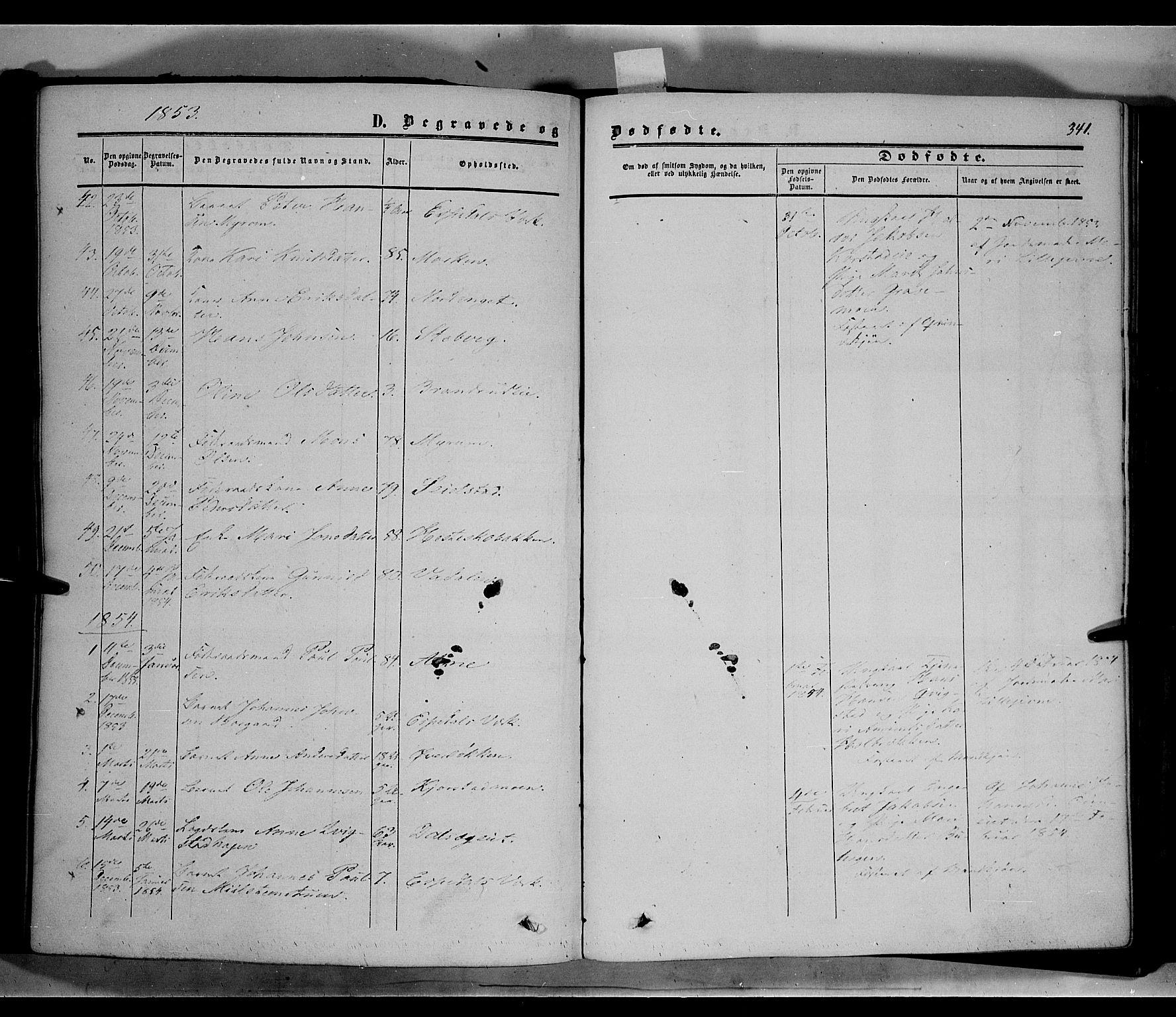 SAH, Sør-Fron prestekontor, H/Ha/Haa/L0001: Ministerialbok nr. 1, 1849-1863, s. 341