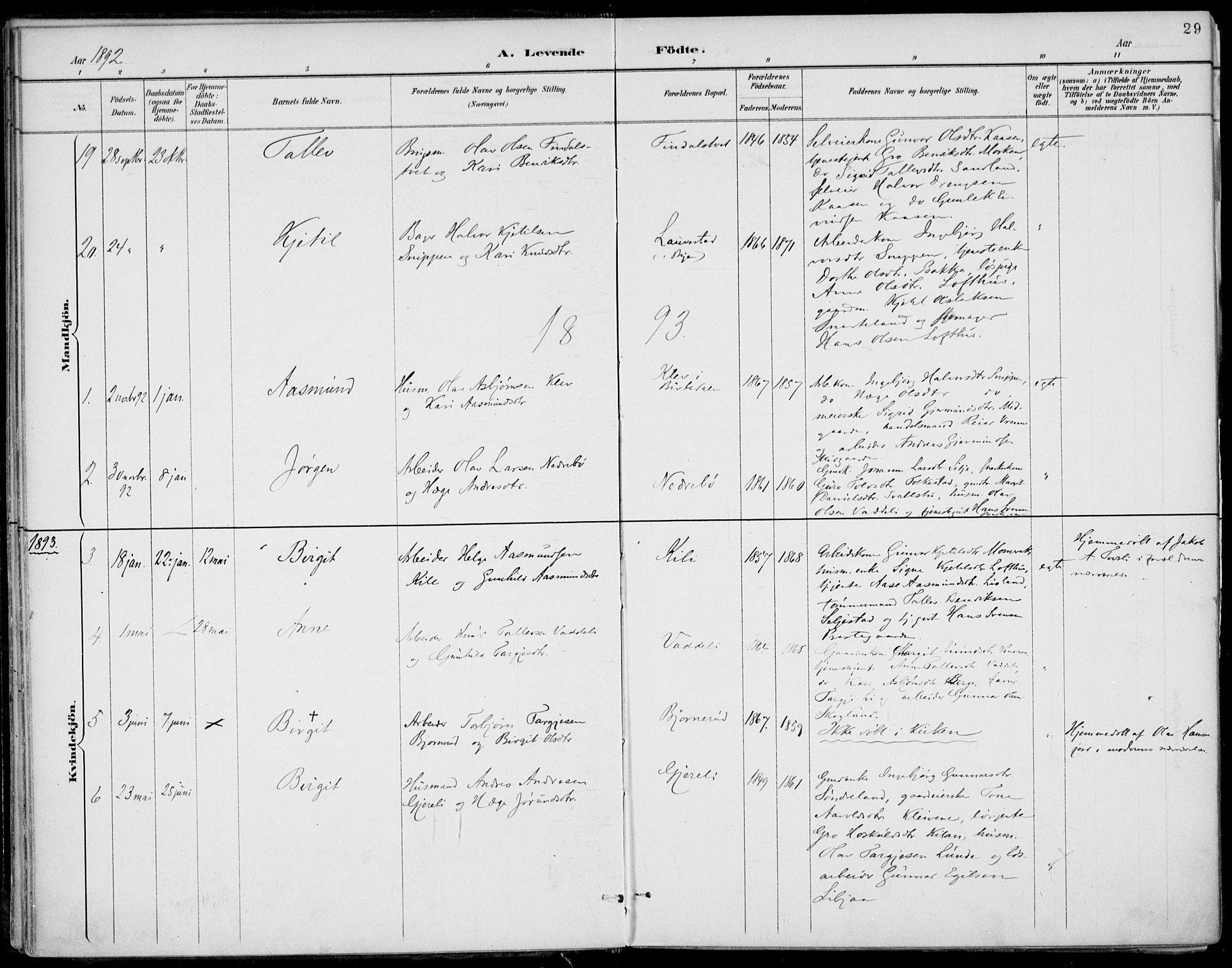 SAKO, Fyresdal kirkebøker, F/Fa/L0007: Ministerialbok nr. I 7, 1887-1914, s. 29