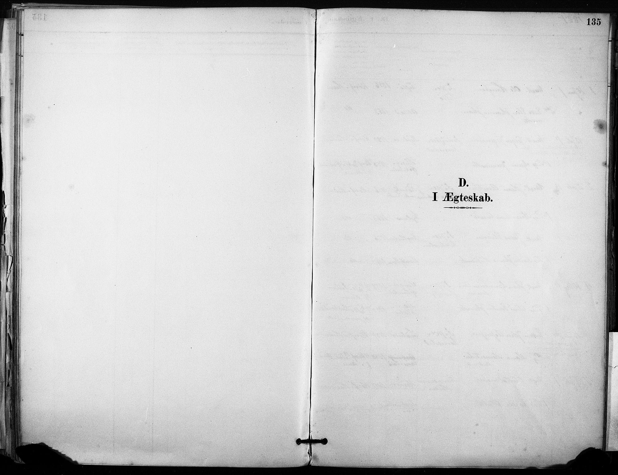 SAT, Ministerialprotokoller, klokkerbøker og fødselsregistre - Sør-Trøndelag, 633/L0518: Ministerialbok nr. 633A01, 1884-1906, s. 135