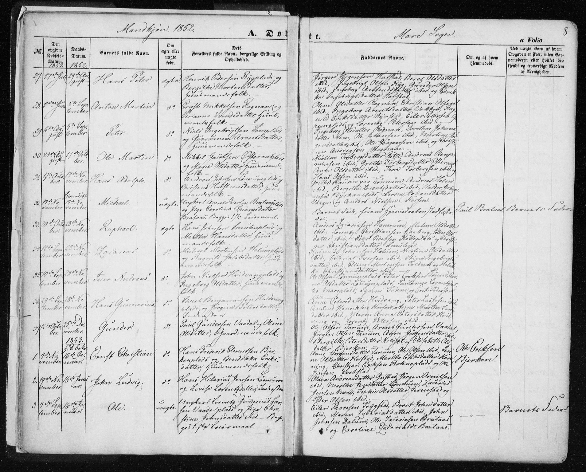SAT, Ministerialprotokoller, klokkerbøker og fødselsregistre - Nord-Trøndelag, 735/L0342: Ministerialbok nr. 735A07 /1, 1849-1862, s. 8