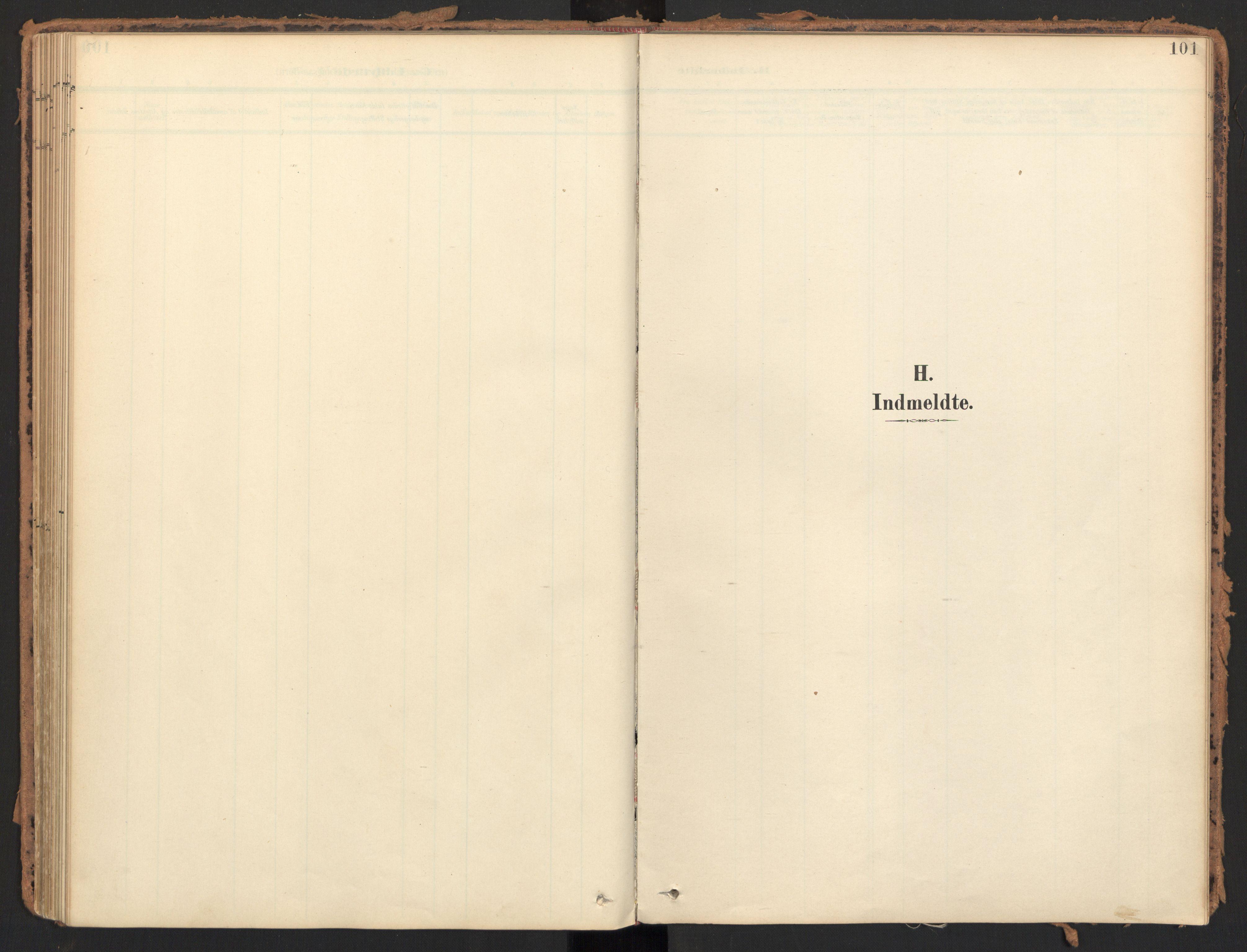 SAT, Ministerialprotokoller, klokkerbøker og fødselsregistre - Møre og Romsdal, 595/L1048: Ministerialbok nr. 595A10, 1900-1917, s. 101