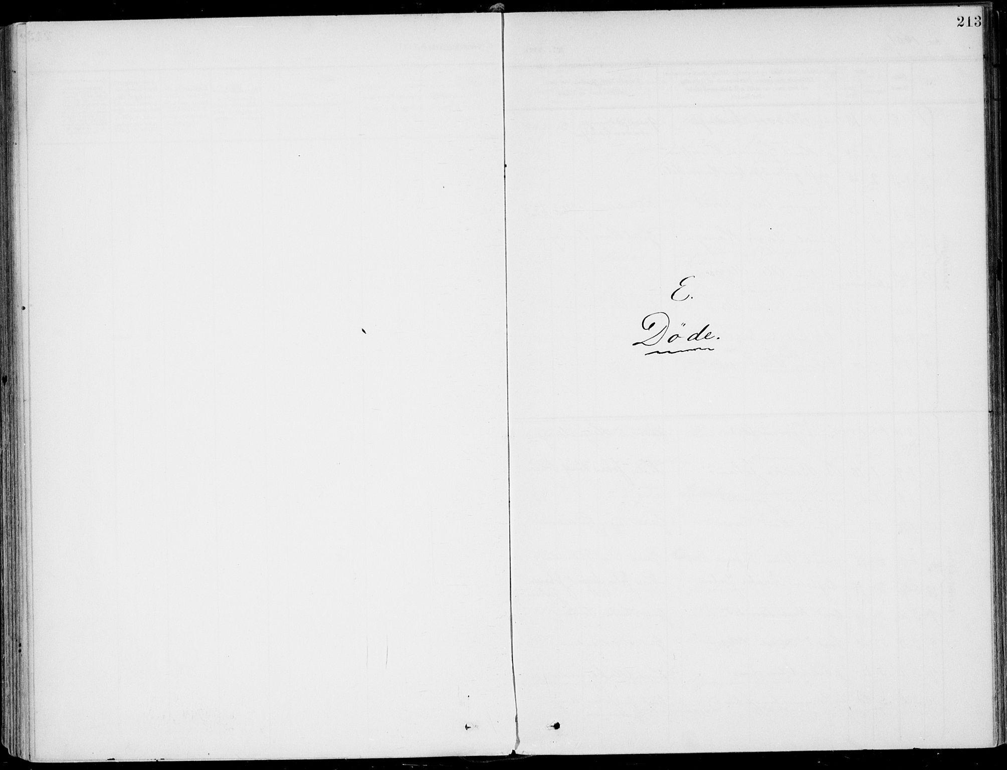 SAKO, Sigdal kirkebøker, F/Fb/L0002: Ministerialbok nr. II 2, 1901-1914, s. 213