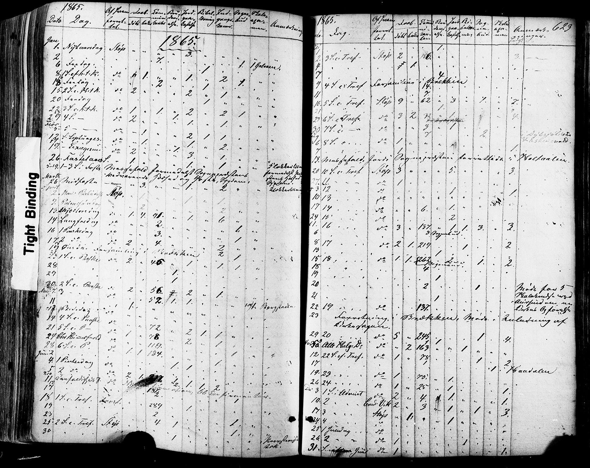 SAT, Ministerialprotokoller, klokkerbøker og fødselsregistre - Sør-Trøndelag, 681/L0932: Ministerialbok nr. 681A10, 1860-1878, s. 623