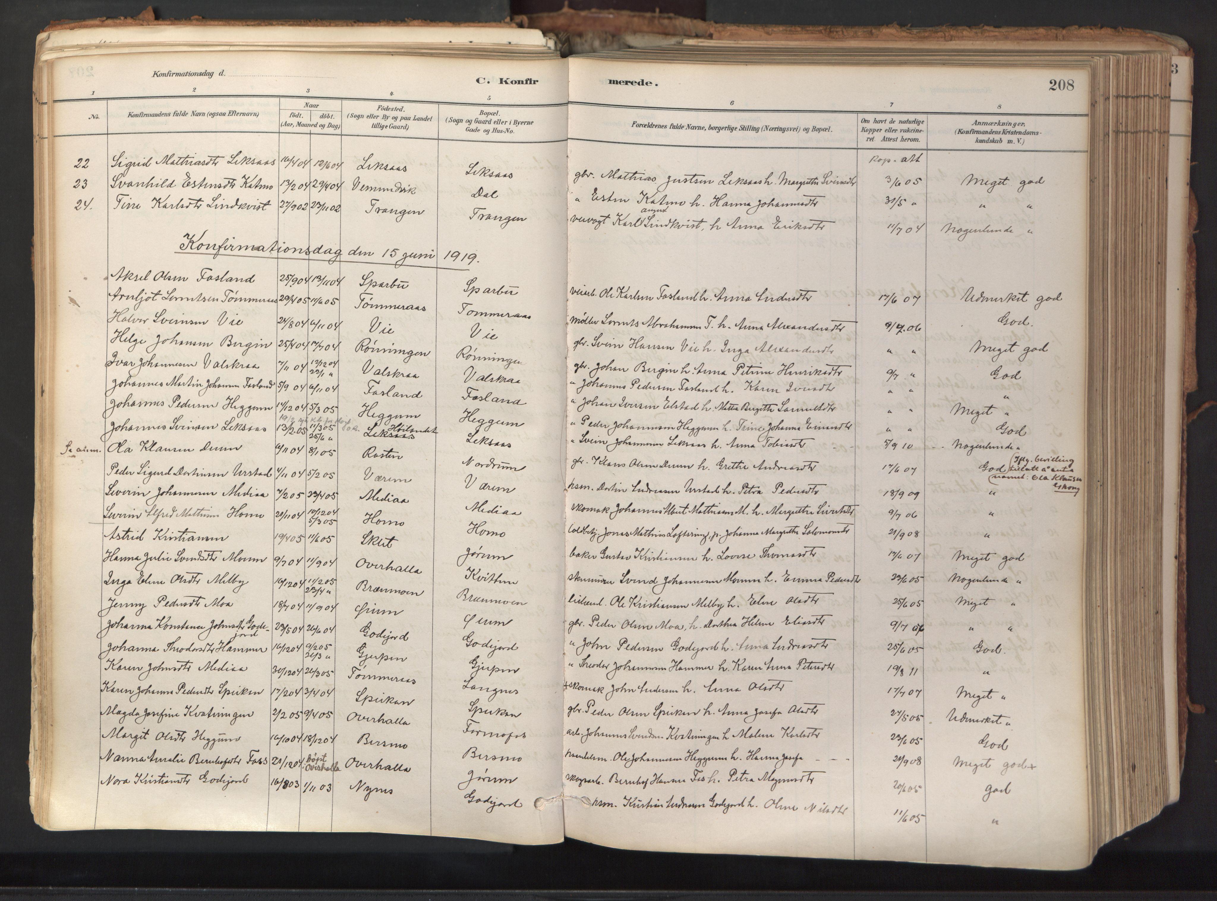 SAT, Ministerialprotokoller, klokkerbøker og fødselsregistre - Nord-Trøndelag, 758/L0519: Ministerialbok nr. 758A04, 1880-1926, s. 208