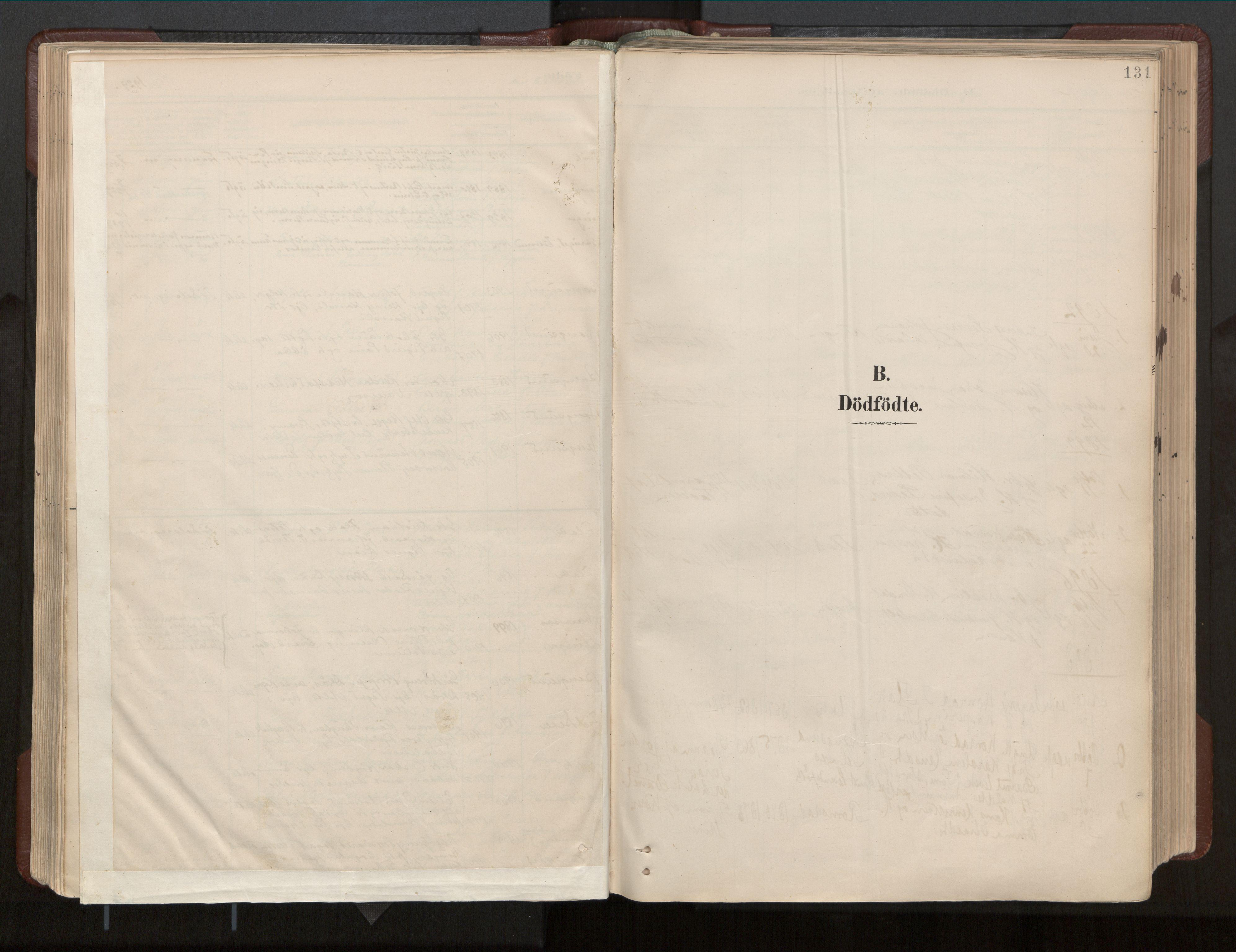 SAT, Ministerialprotokoller, klokkerbøker og fødselsregistre - Nord-Trøndelag, 770/L0589: Ministerialbok nr. 770A03, 1887-1929, s. 131