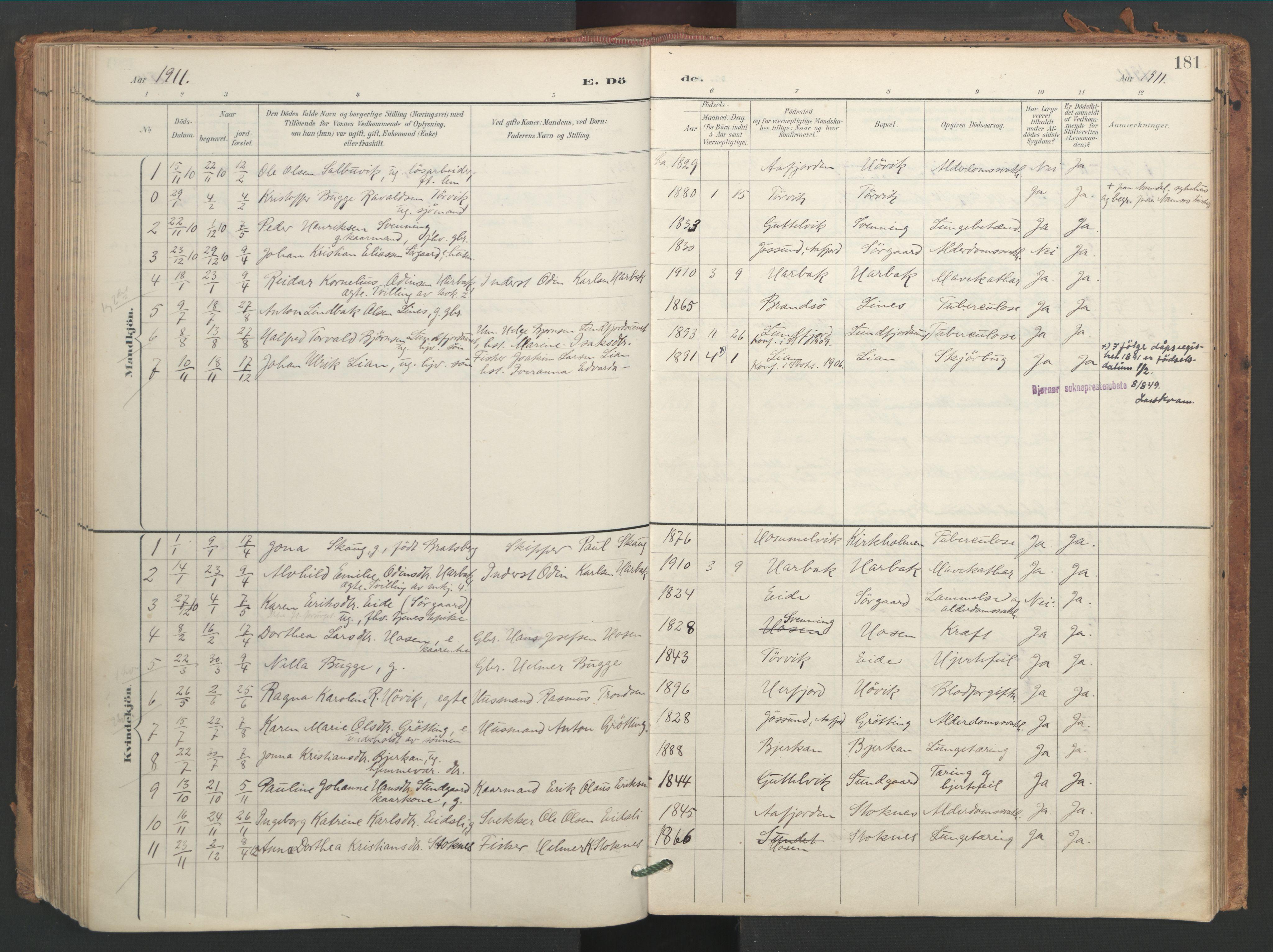 SAT, Ministerialprotokoller, klokkerbøker og fødselsregistre - Sør-Trøndelag, 656/L0693: Ministerialbok nr. 656A02, 1894-1913, s. 181