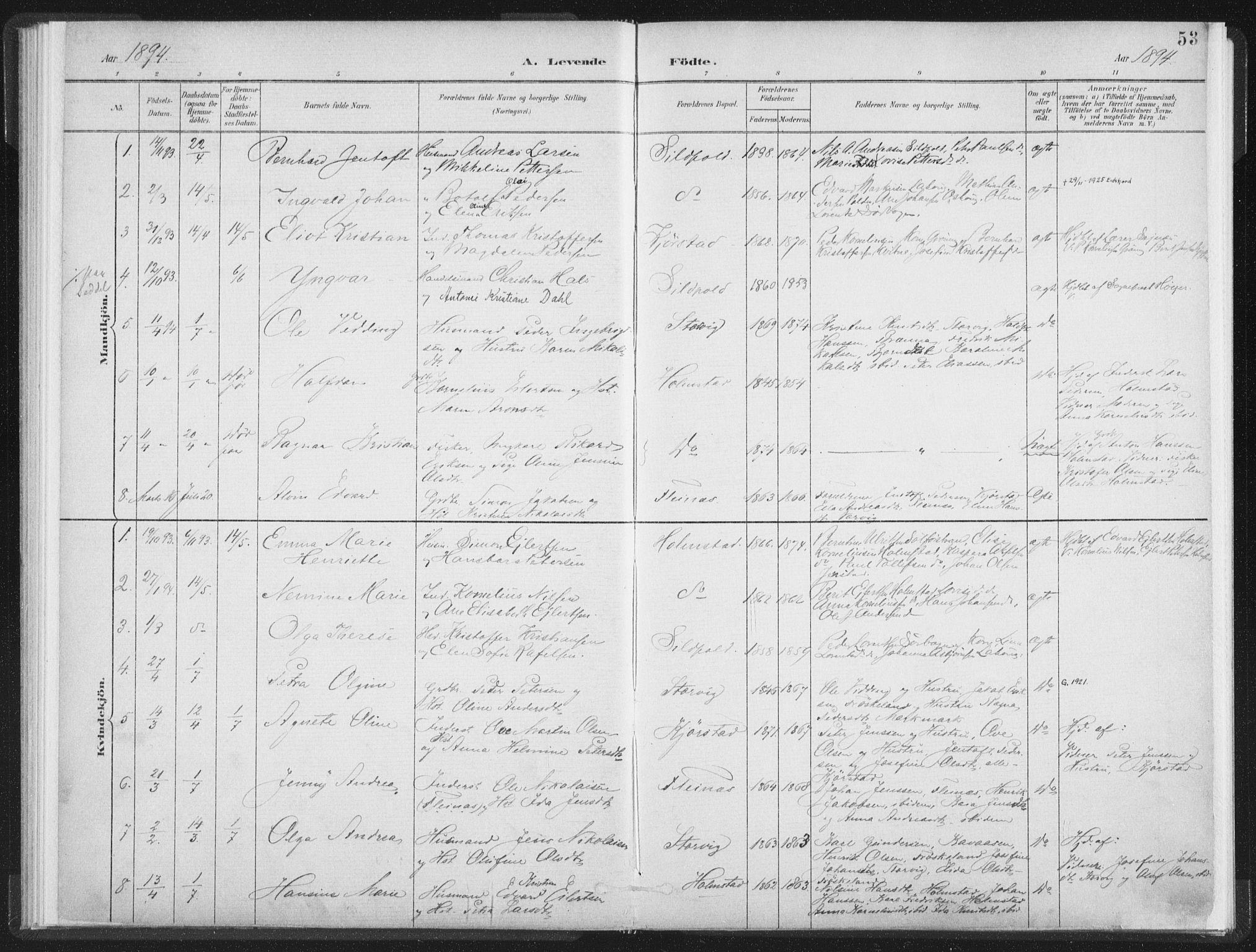 SAT, Ministerialprotokoller, klokkerbøker og fødselsregistre - Nordland, 890/L1286: Ministerialbok nr. 890A01, 1882-1902, s. 53