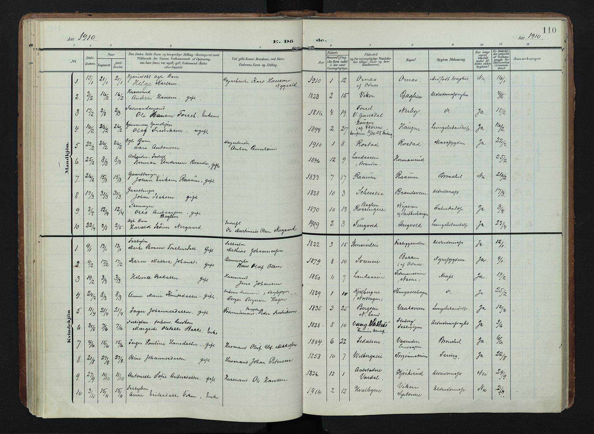 SAH, Søndre Land prestekontor, K/L0005: Ministerialbok nr. 5, 1905-1914, s. 110