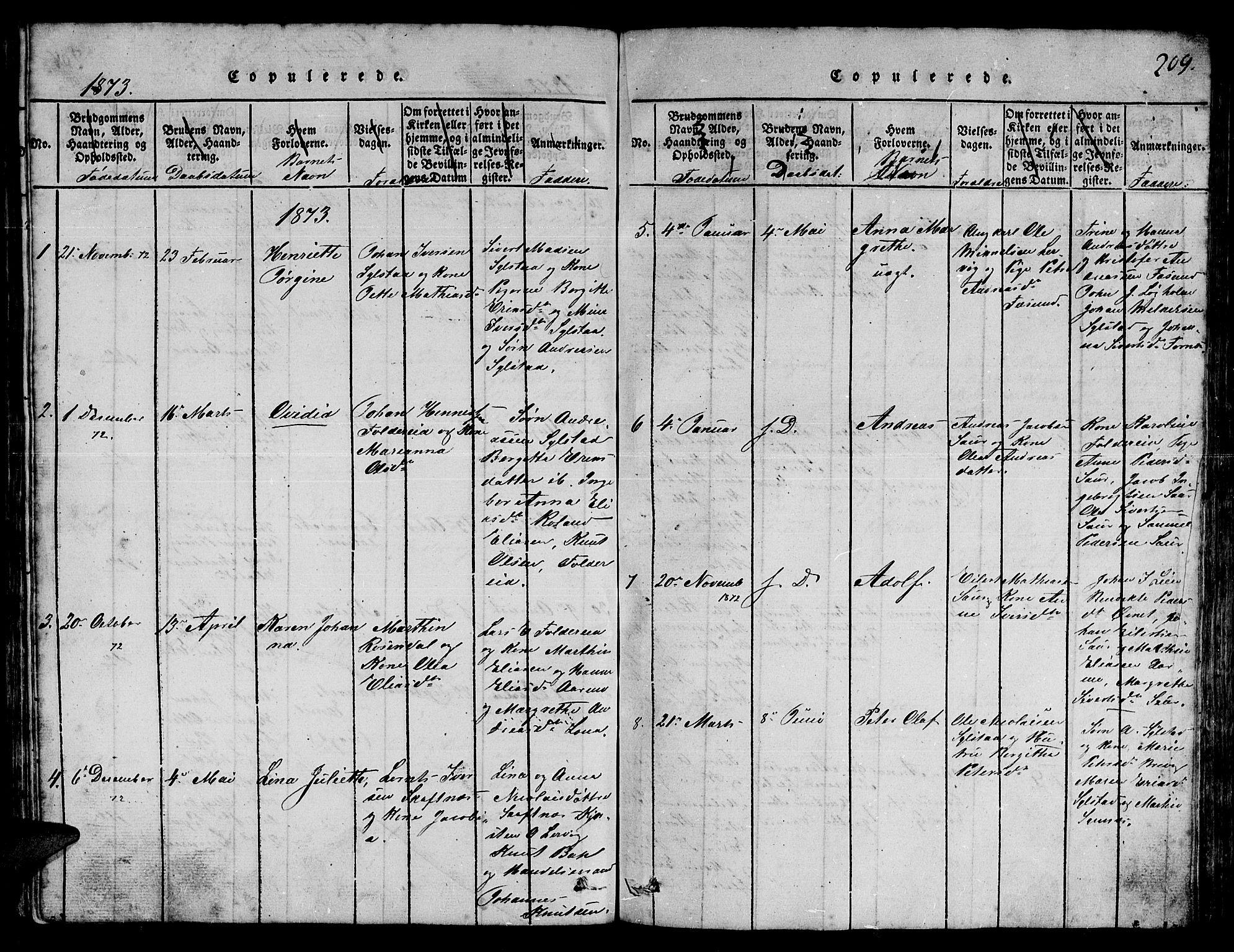 SAT, Ministerialprotokoller, klokkerbøker og fødselsregistre - Nord-Trøndelag, 780/L0648: Klokkerbok nr. 780C01 /3, 1815-1877, s. 209