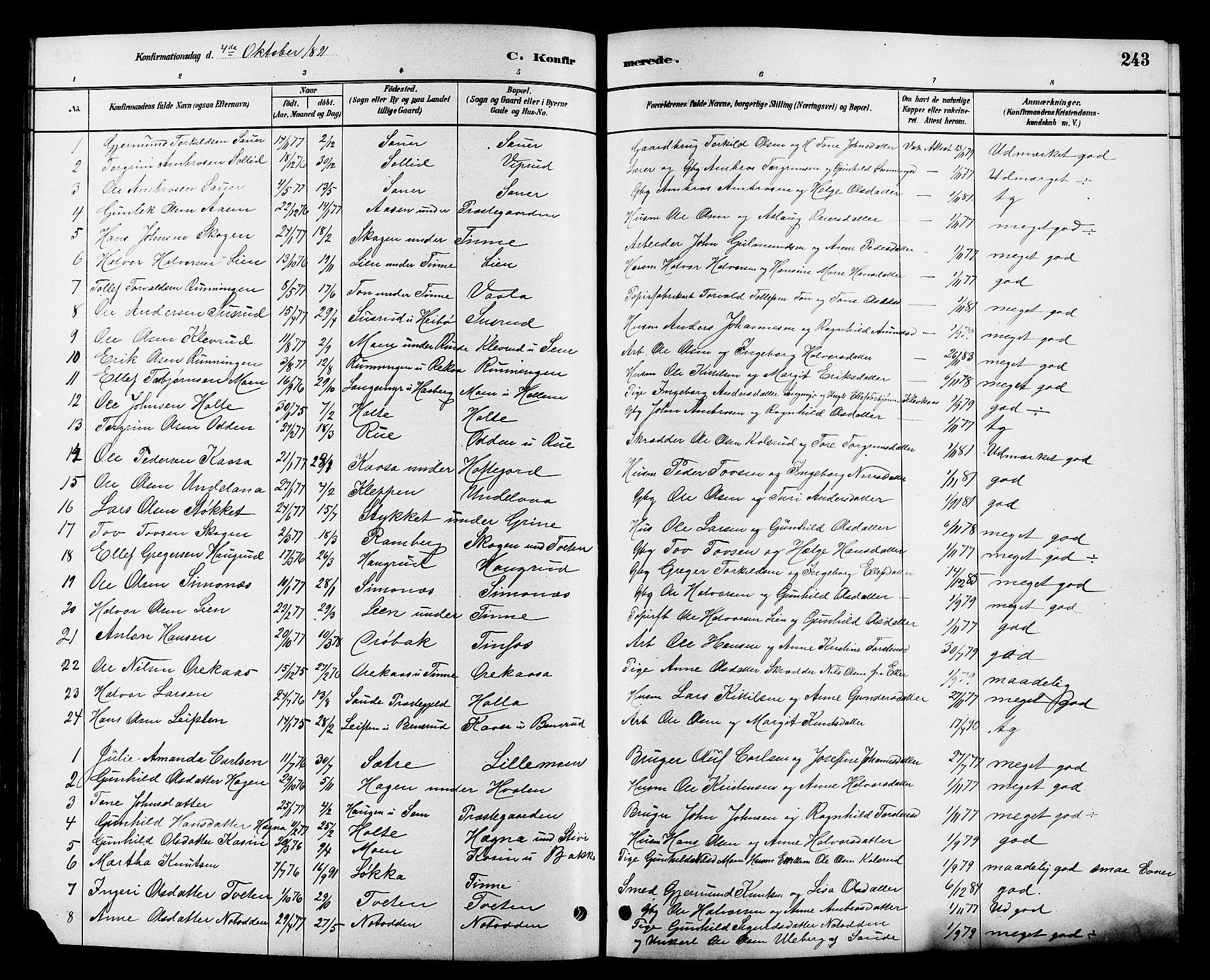 SAKO, Heddal kirkebøker, G/Ga/L0002: Klokkerbok nr. I 2, 1879-1908, s. 243