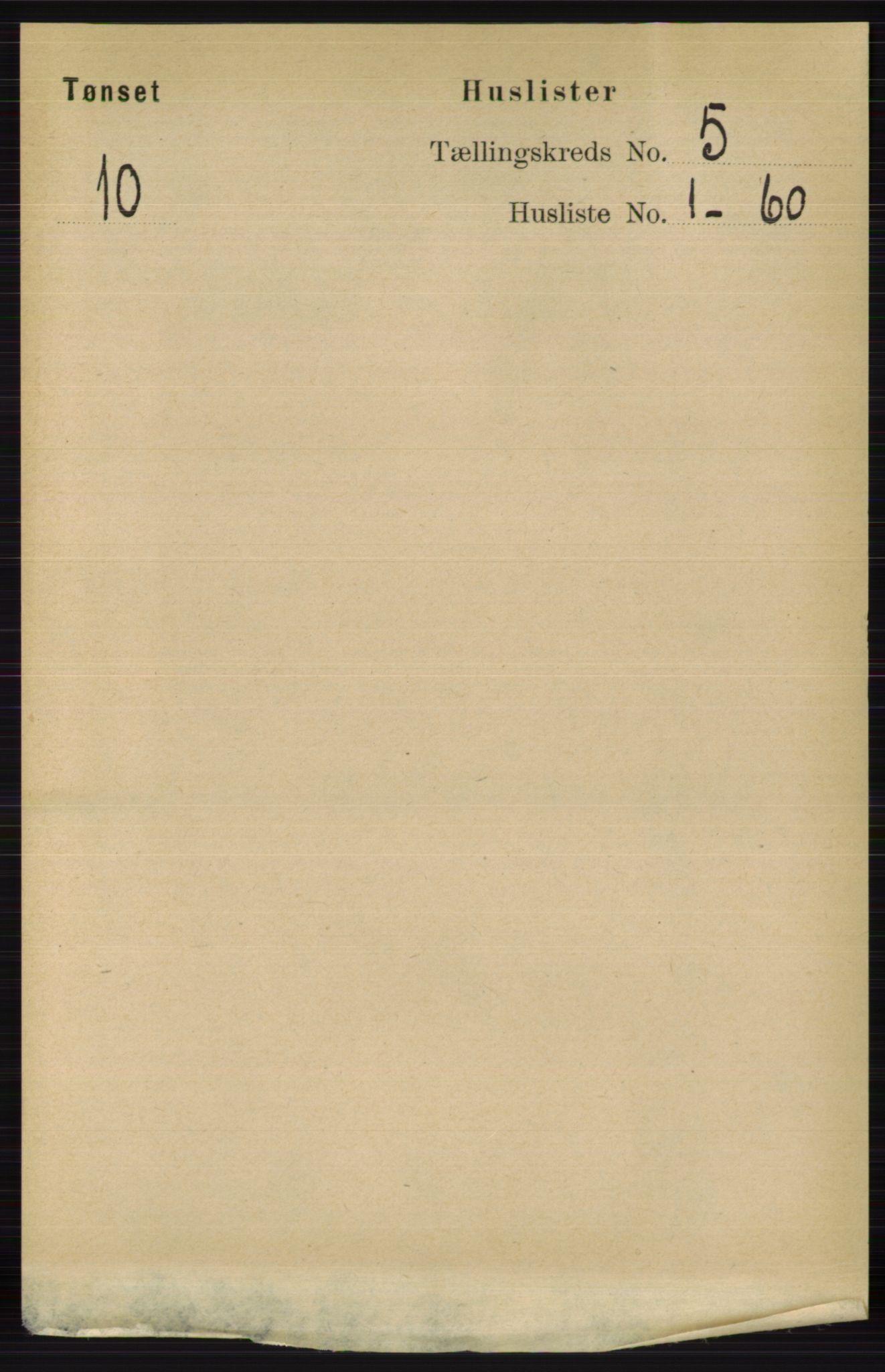 RA, Folketelling 1891 for 0437 Tynset herred, 1891, s. 1013