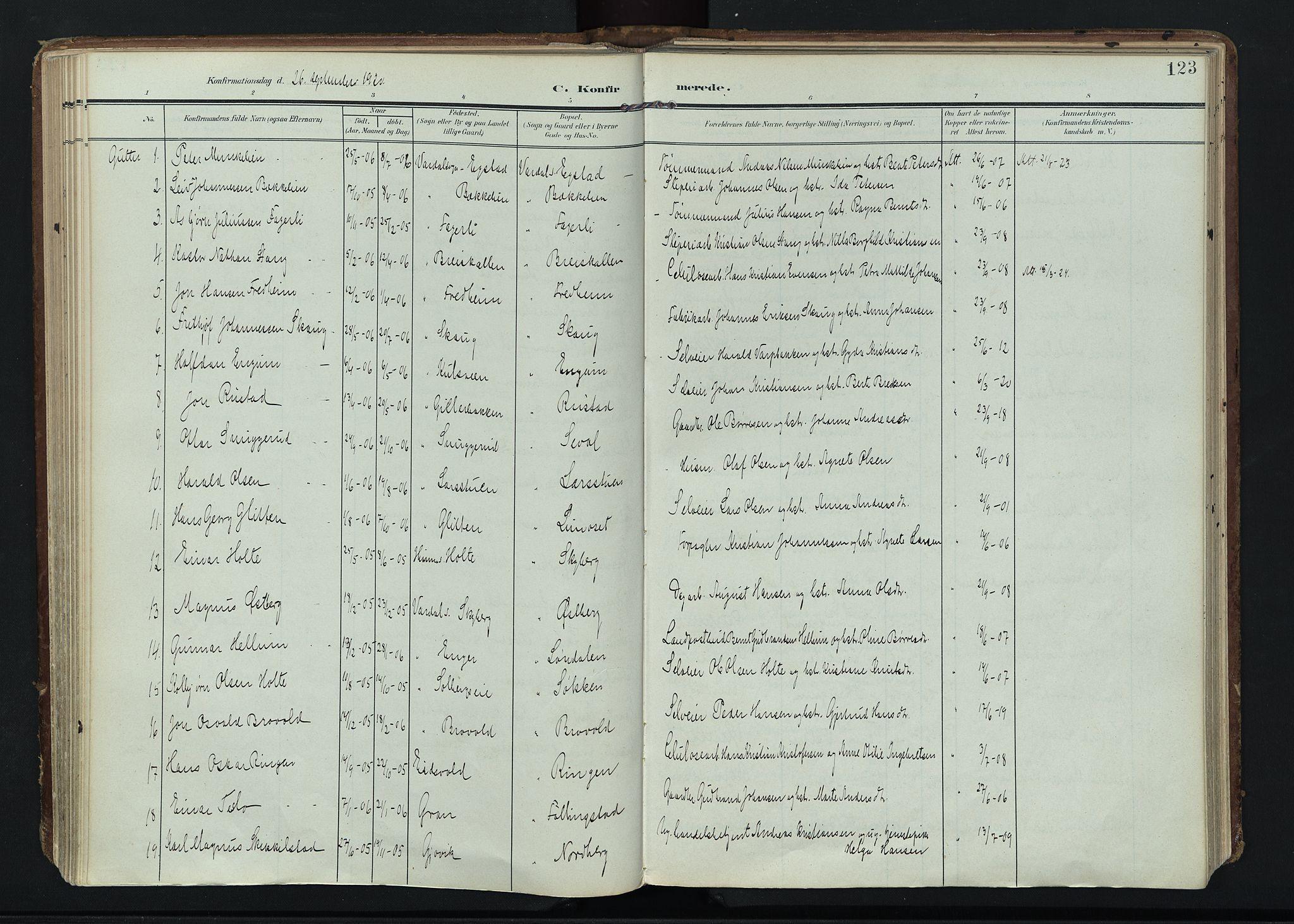 SAH, Vardal prestekontor, H/Ha/Haa/L0020: Ministerialbok nr. 20, 1907-1921, s. 123