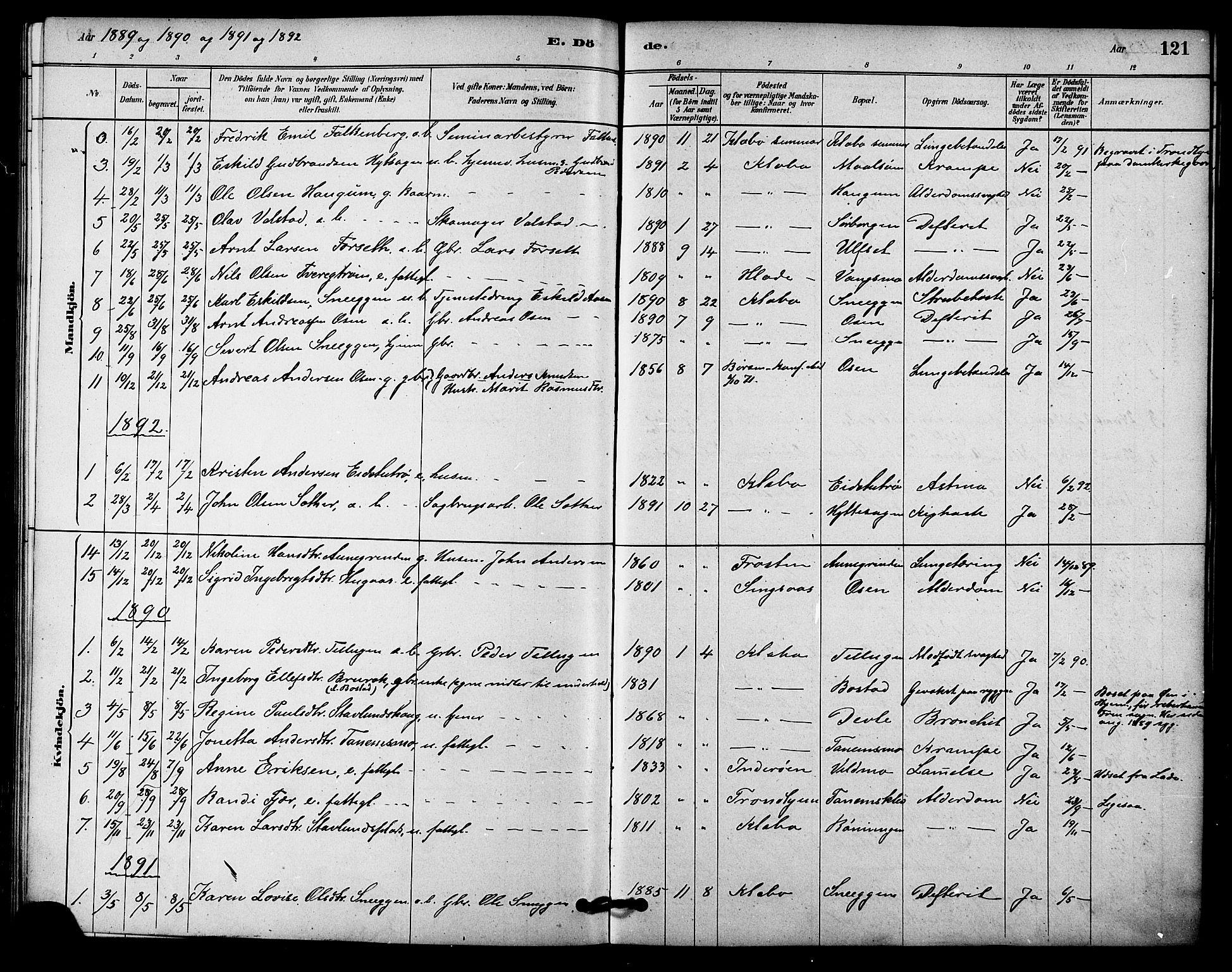 SAT, Ministerialprotokoller, klokkerbøker og fødselsregistre - Sør-Trøndelag, 618/L0444: Ministerialbok nr. 618A07, 1880-1898, s. 121