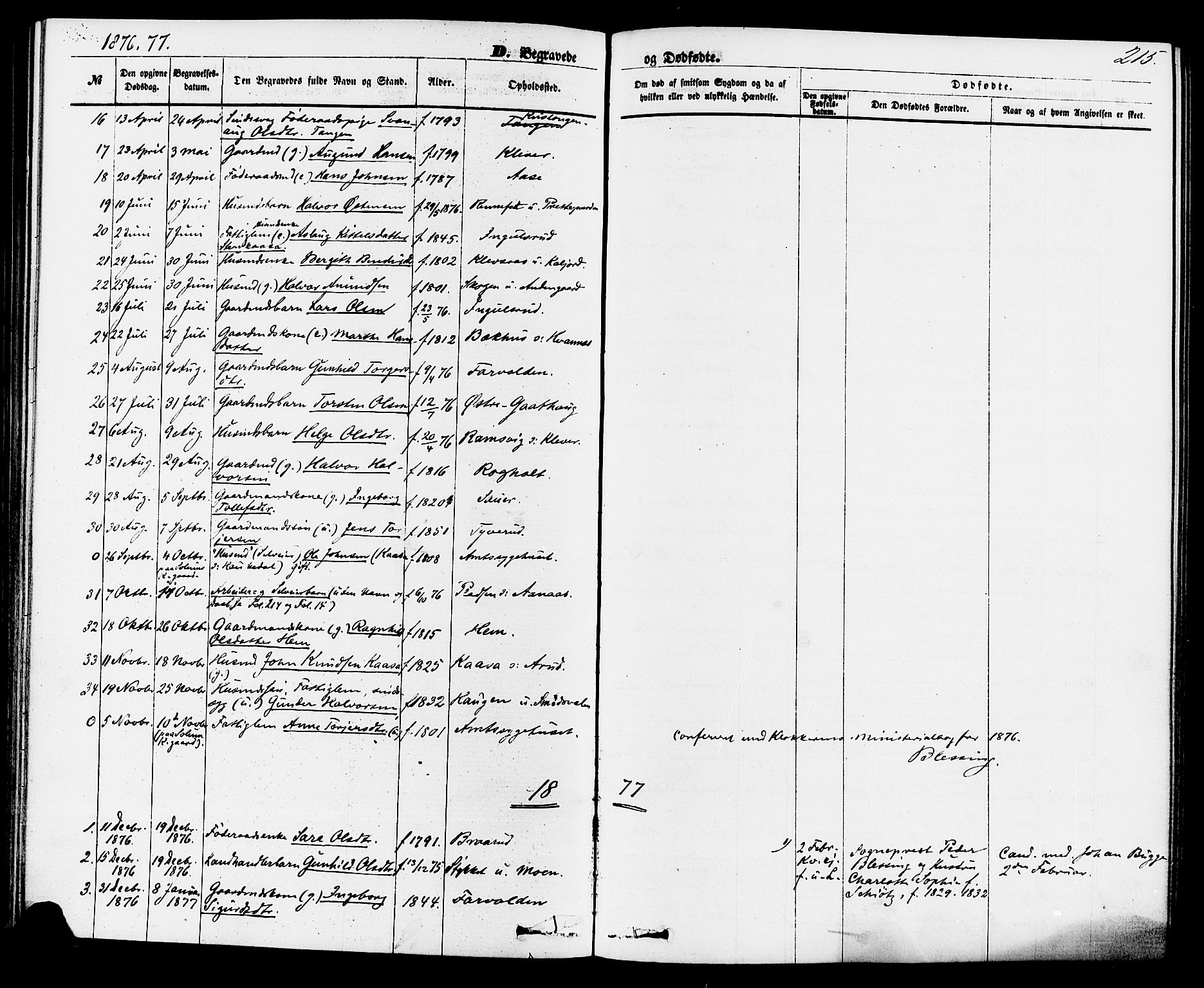 SAKO, Sauherad kirkebøker, F/Fa/L0008: Ministerialbok nr. I 8, 1873-1886, s. 215