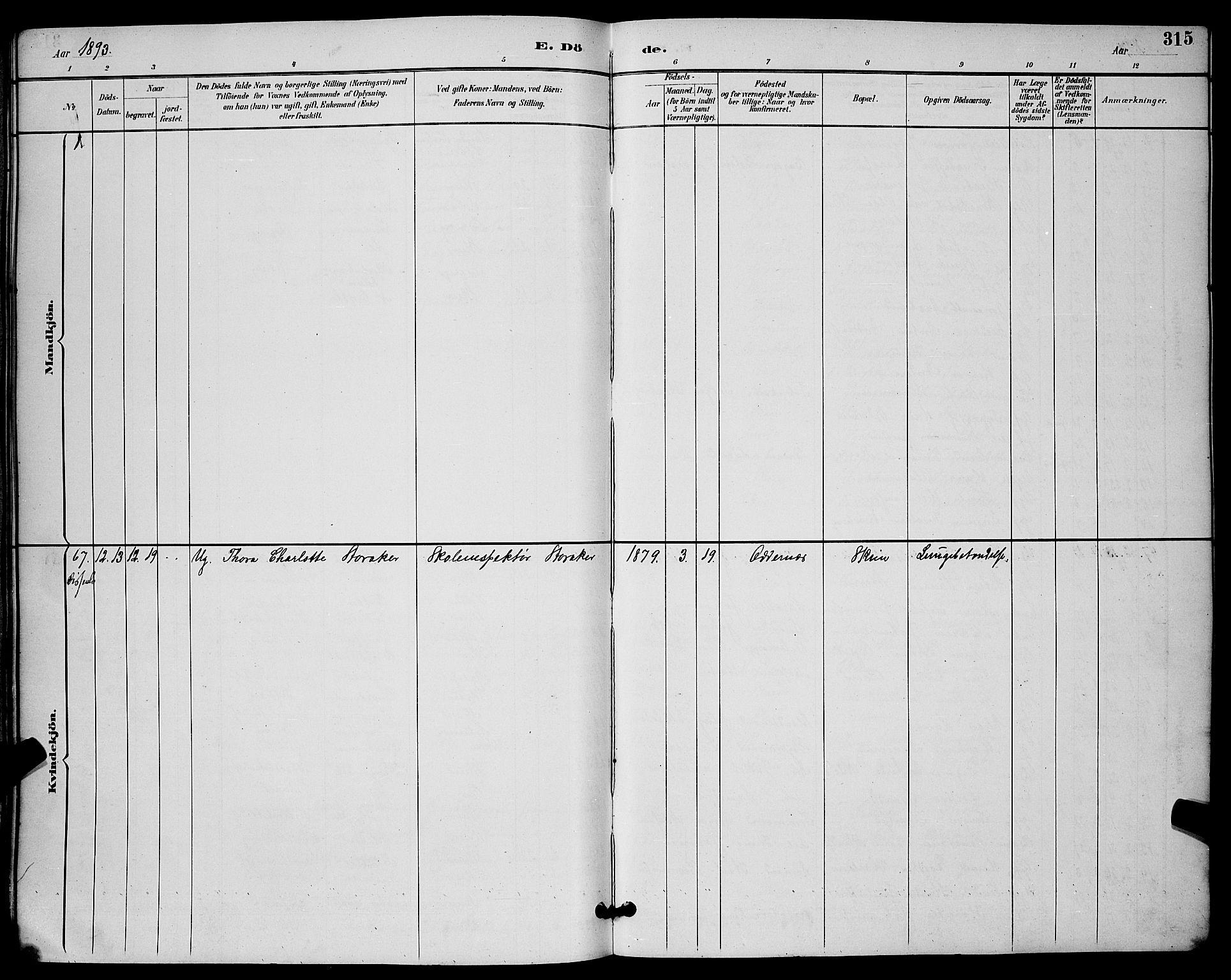 SAKO, Skien kirkebøker, G/Ga/L0007: Klokkerbok nr. 7, 1891-1900, s. 315