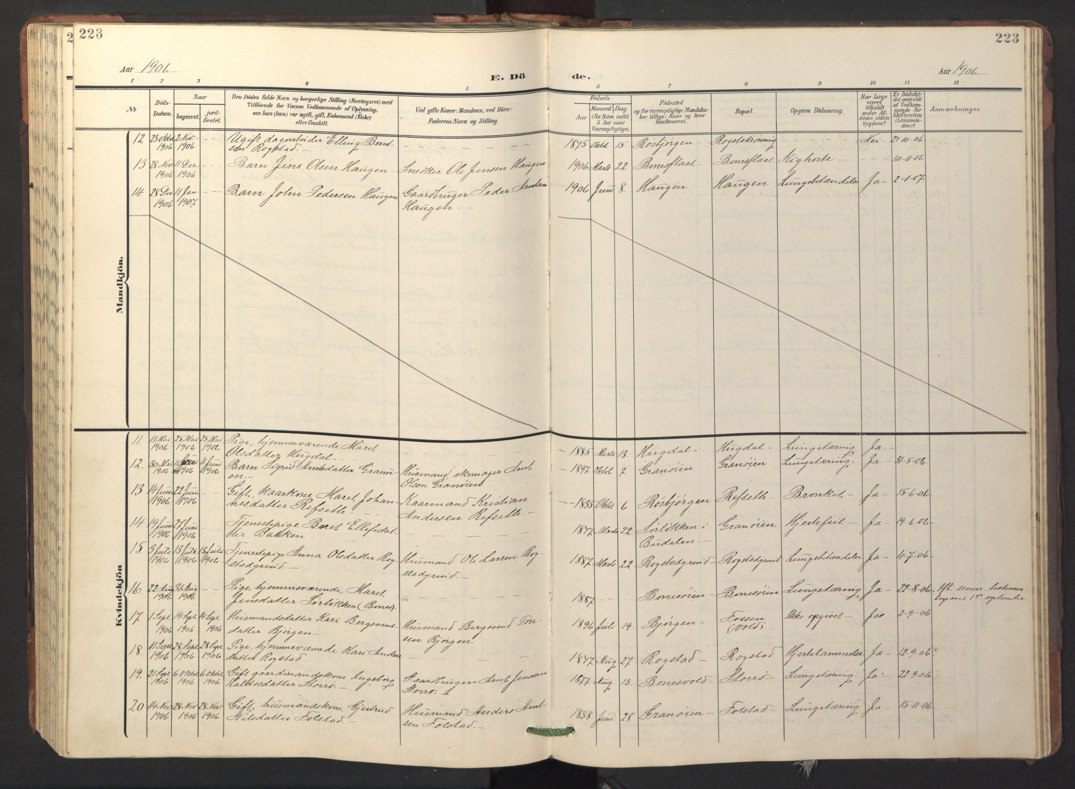 SAT, Ministerialprotokoller, klokkerbøker og fødselsregistre - Sør-Trøndelag, 687/L1019: Klokkerbok nr. 687C03, 1904-1931, s. 223